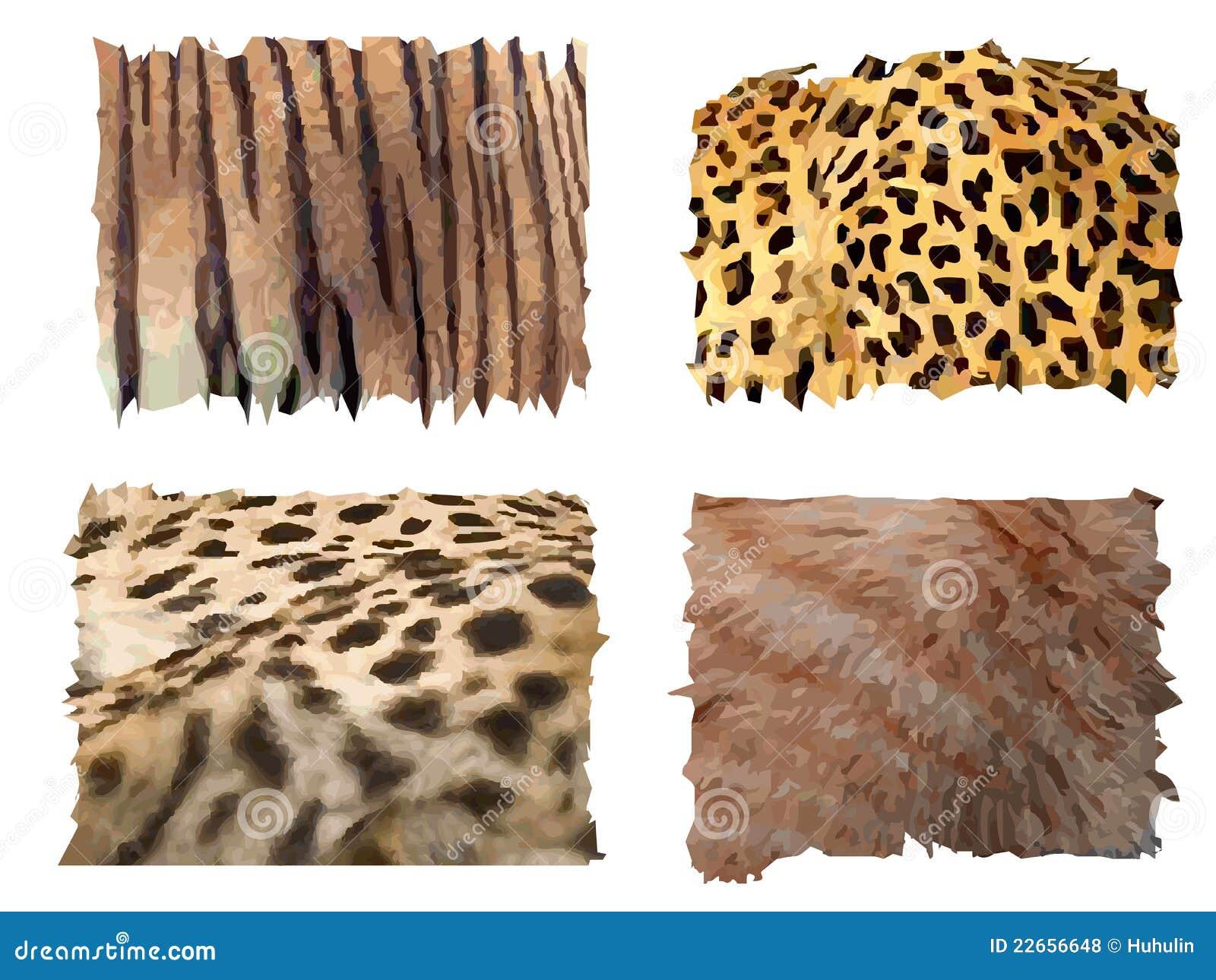 Feline pälsmodeller för djur