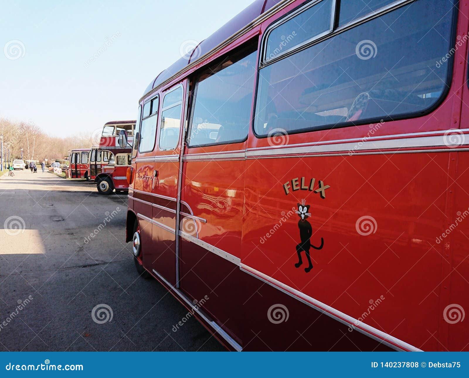 Felix bus