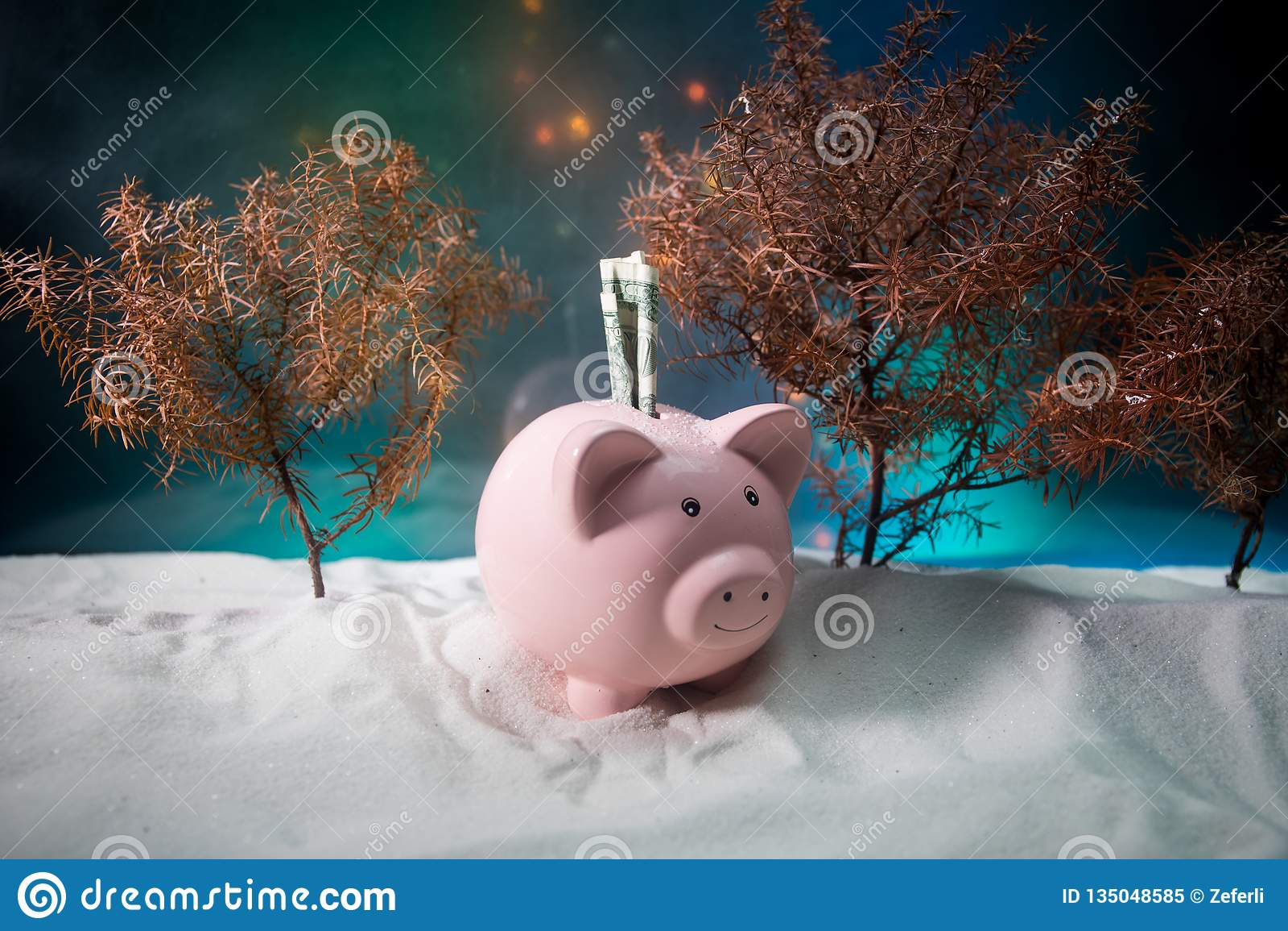 Feliz Natal e ano novo feliz Ano novo chinês do porco, símbolo 2019 para o cartão de cumprimentos Foco seletivo macio E