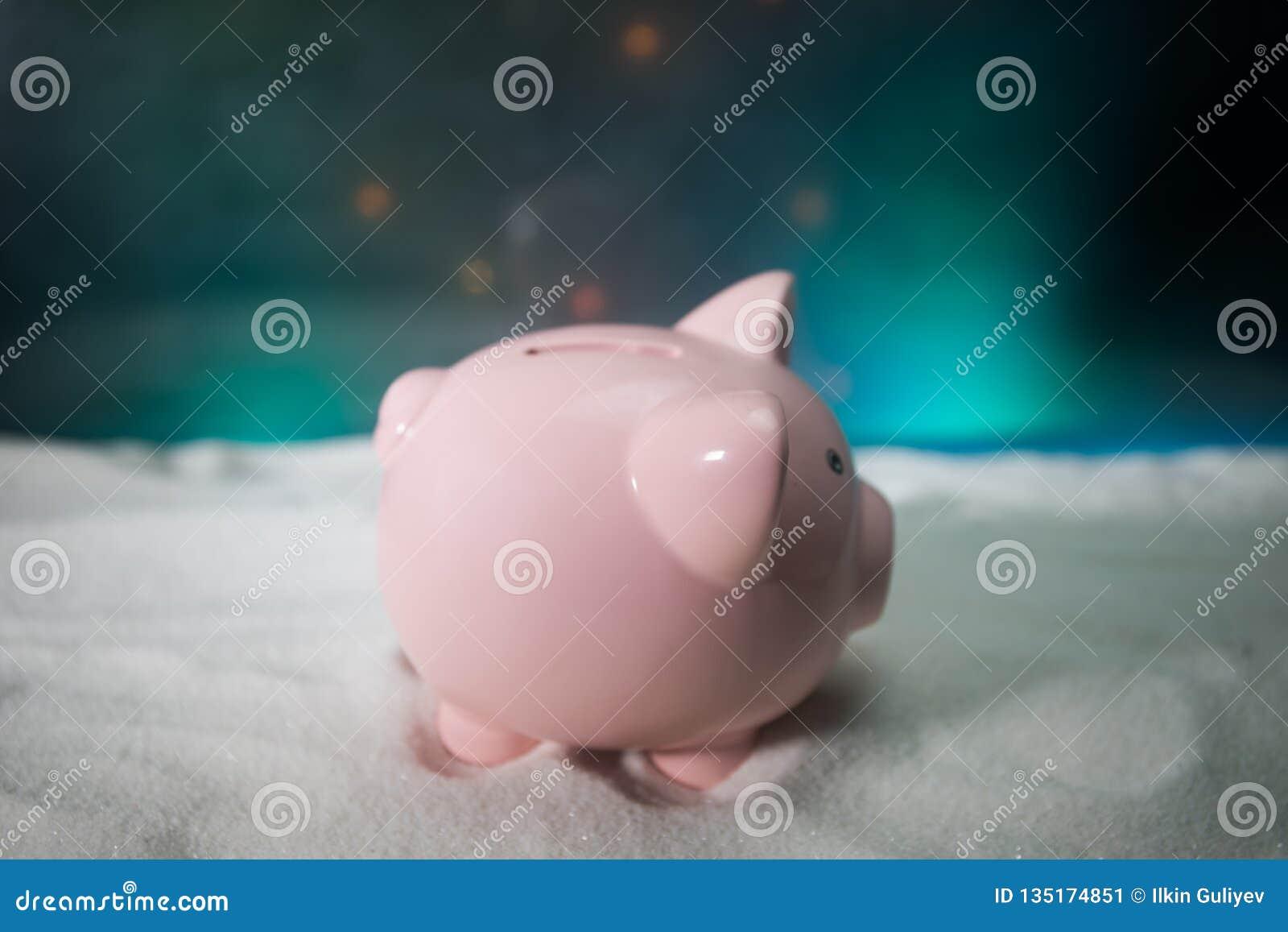 Feliz Navidad y Feliz Año Nuevo Año Nuevo chino del cerdo, símbolo 2019 para la tarjeta de felicitaciones Foco selectivo suave Ce
