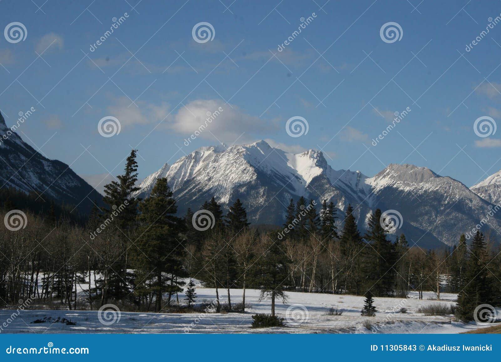 Felsige Berge und Wald