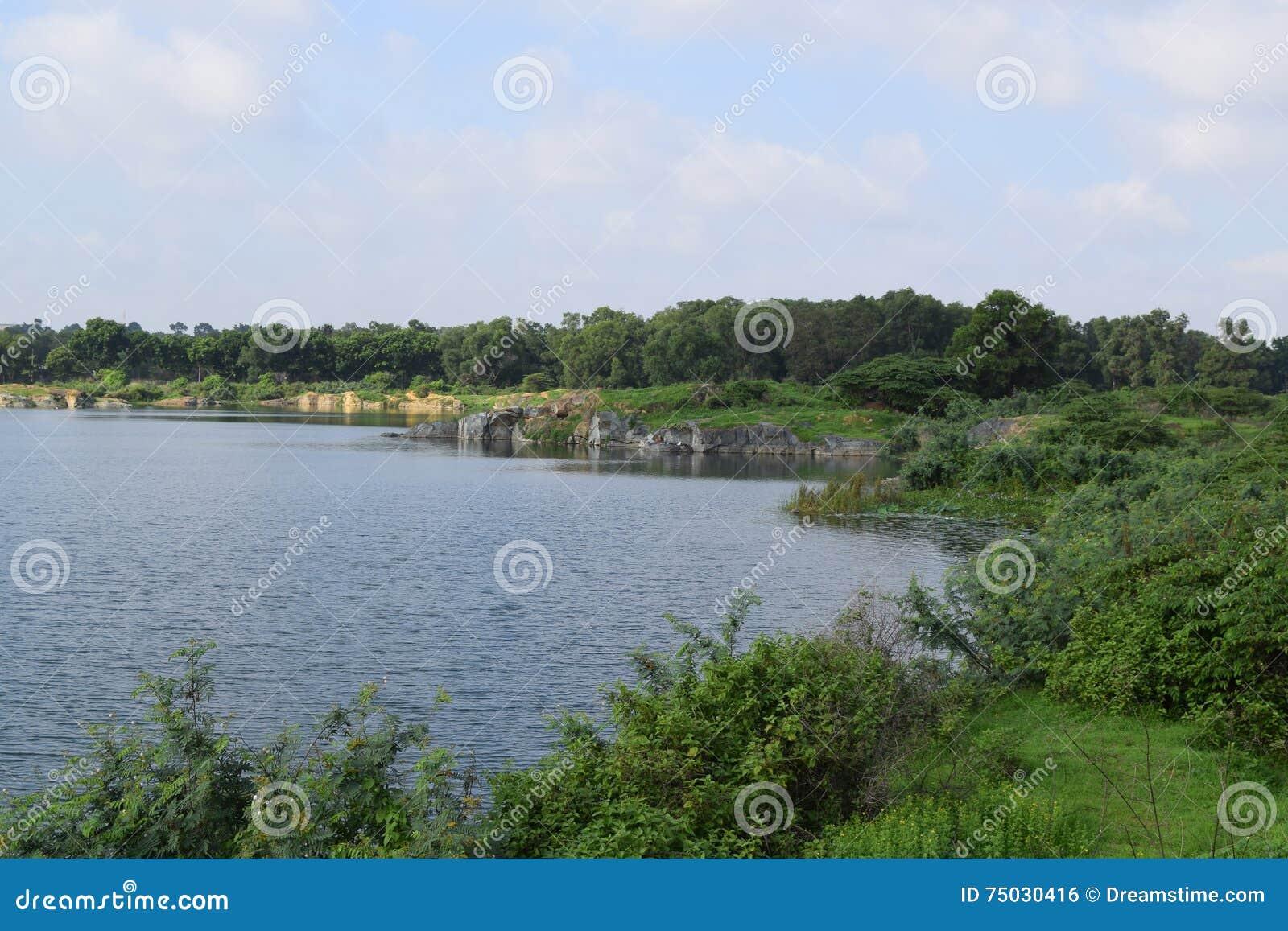 Felsiger See Mit Einigen Steinen Und Gras In Der Bank Stockfoto