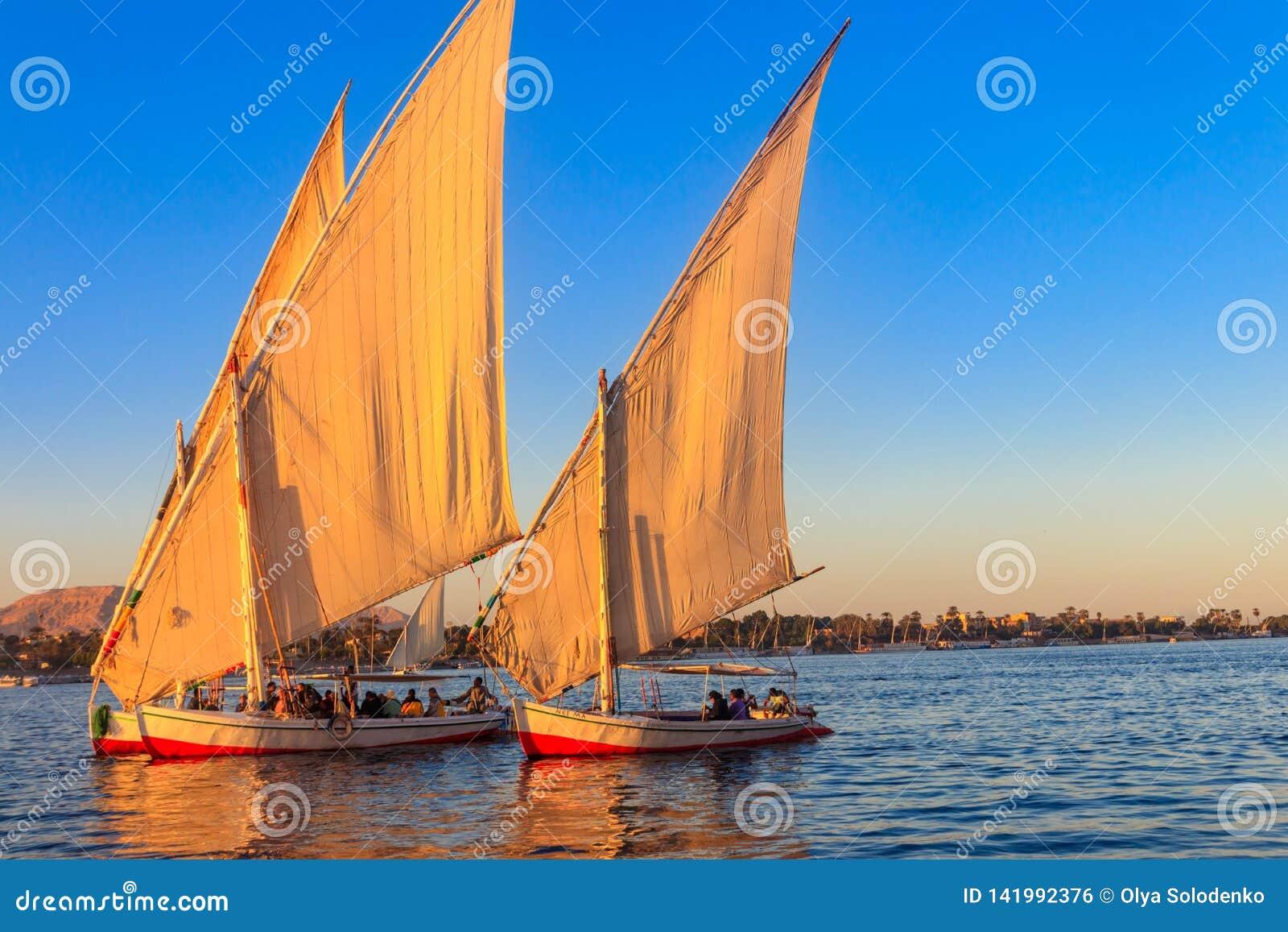 Felucca fartygsegling på Nilet River i Luxor, Egypten Traditionella egyptiska segelbåtar