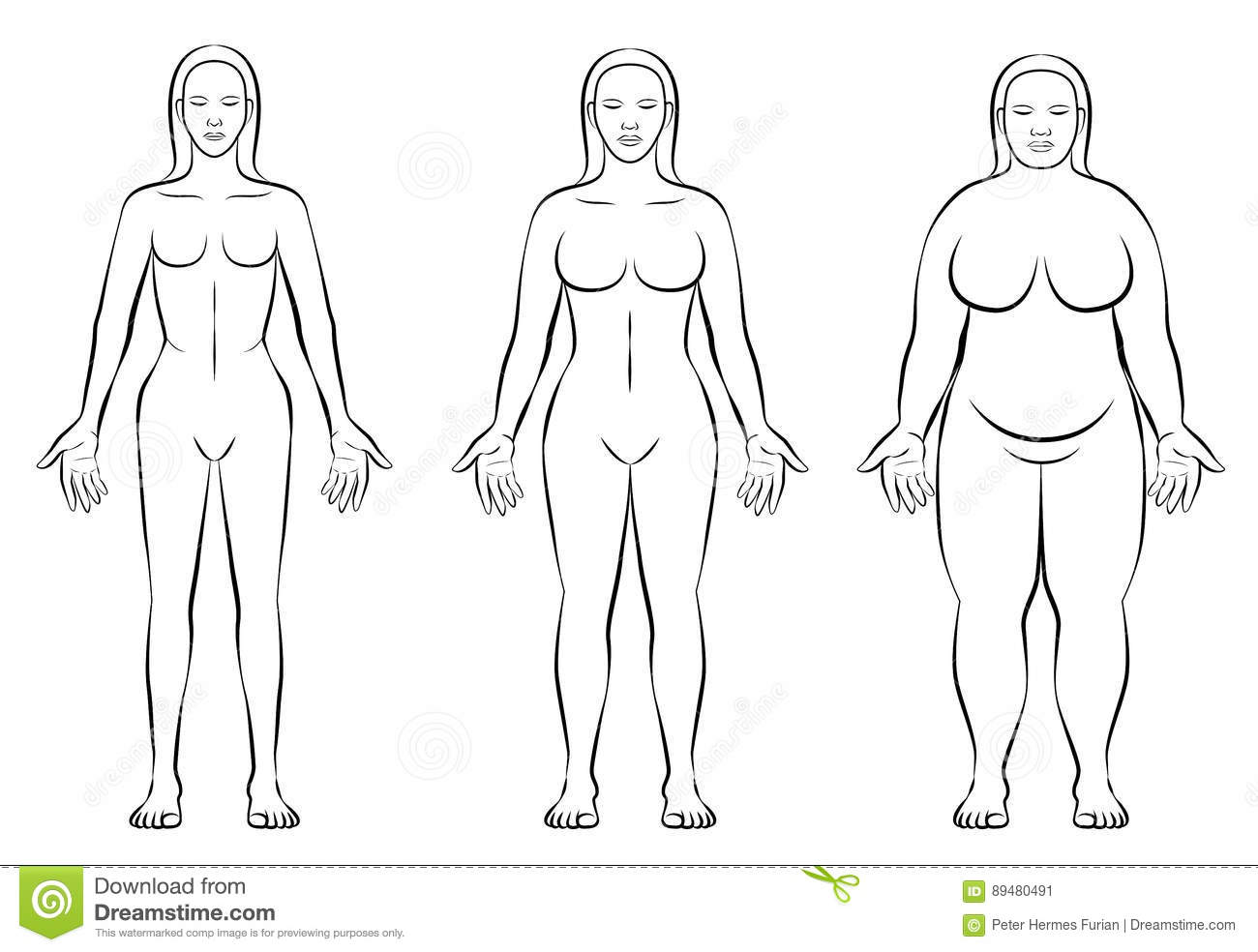 Female Body Constitution Types Thin Fat Normal Weight Stock Vector