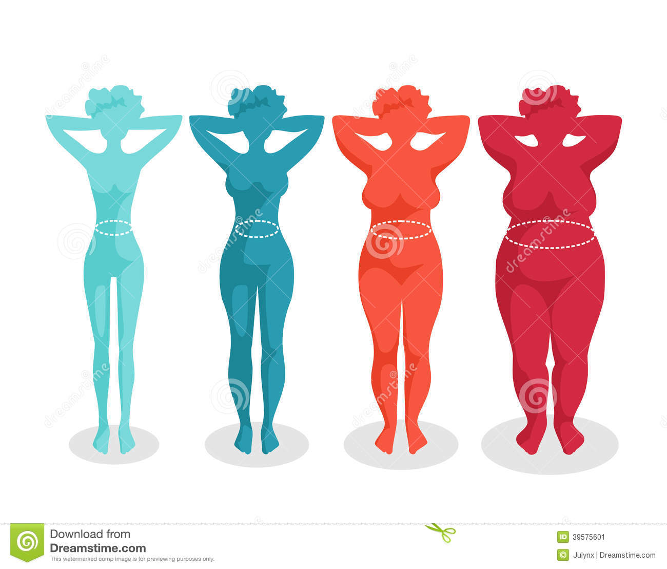 Female Body Shapes - Four Types Stock Vector - Image: 39575601