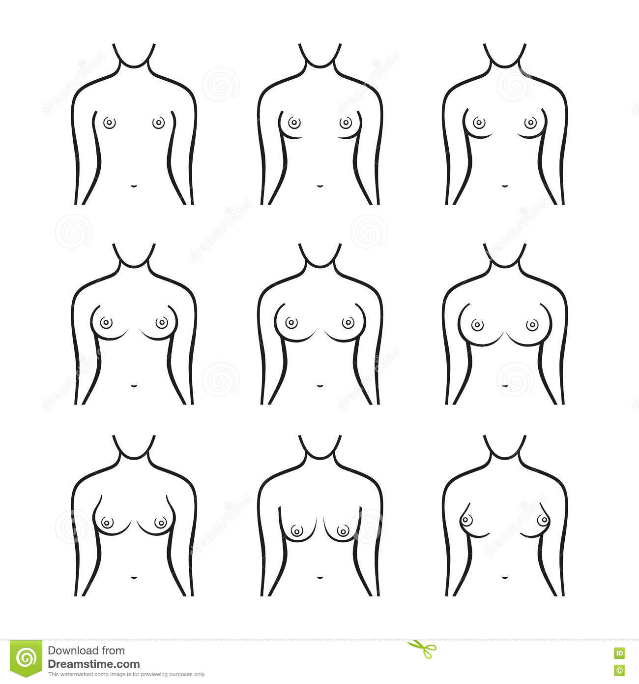 b912eb8bdbf Royalty-Free Vector. Female Breast Set. Different Types
