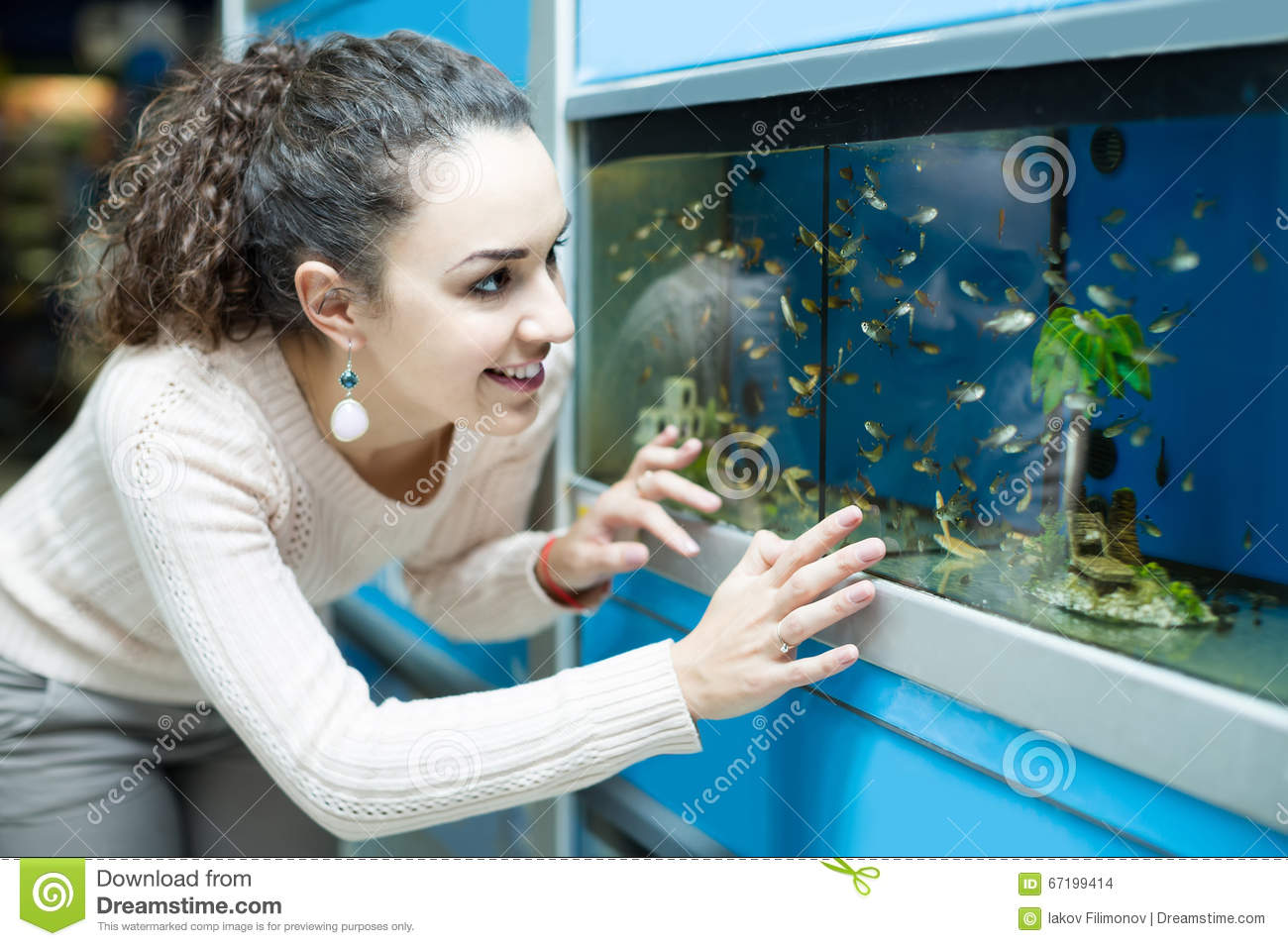 Fish tank in spanish - Female Customer Watching Fish In Aquarium Tank