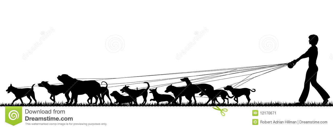 Foreground silhouette of a woman walking many dogs with all elements ...