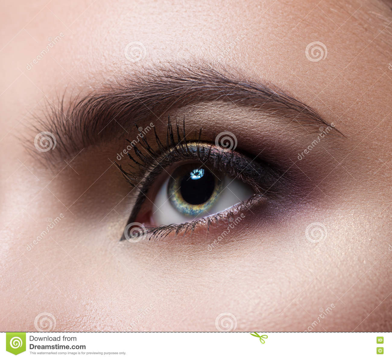 Female Eye Close Up Perfect Makeup And Eyebrows Beautiful Gray