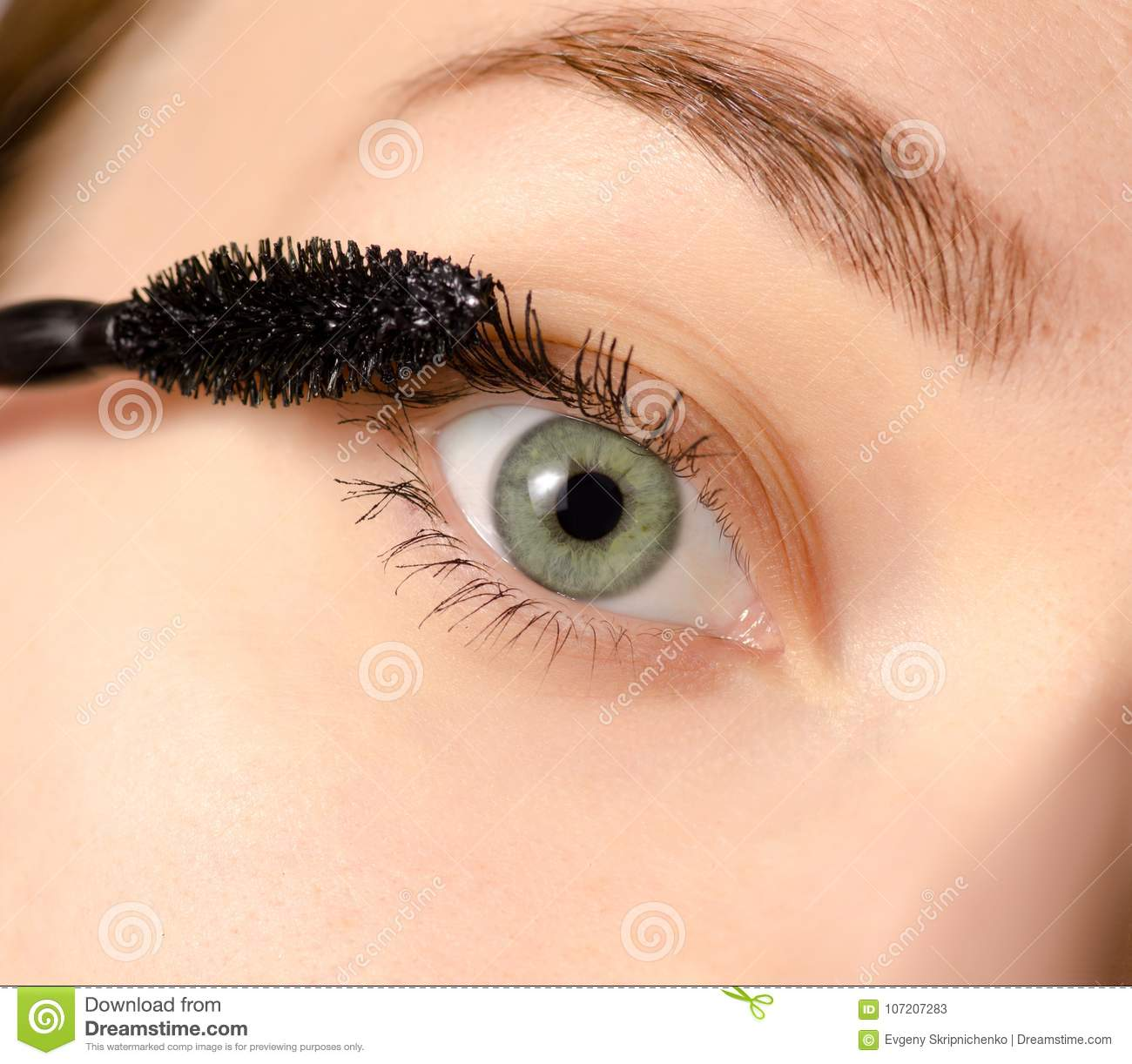 Female Eye Dye Eyelashes Mascara Stock Image Image Of Attractive