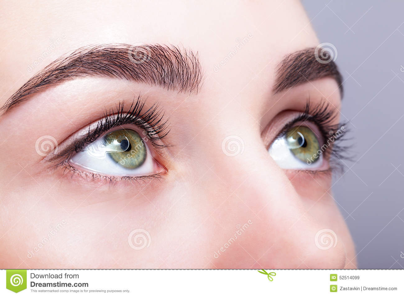 Female Eye Zone And Brows With Day Makeup Stock Image Image Of