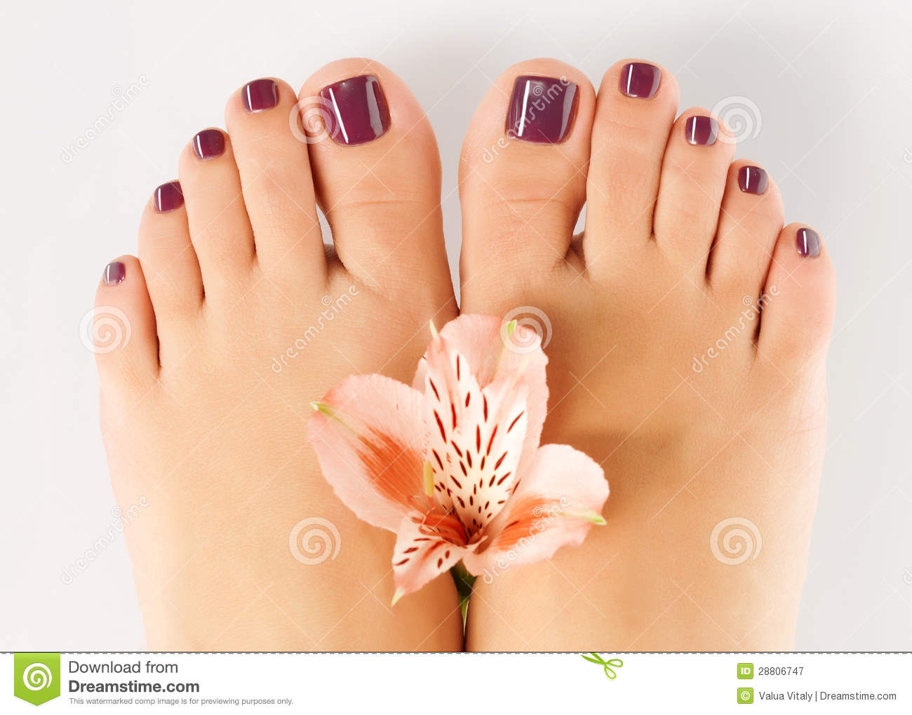 Female feet galleries