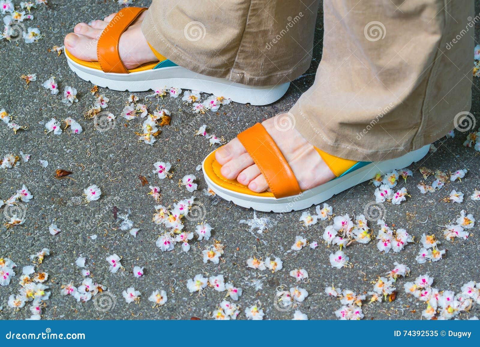 Female feet in sandals