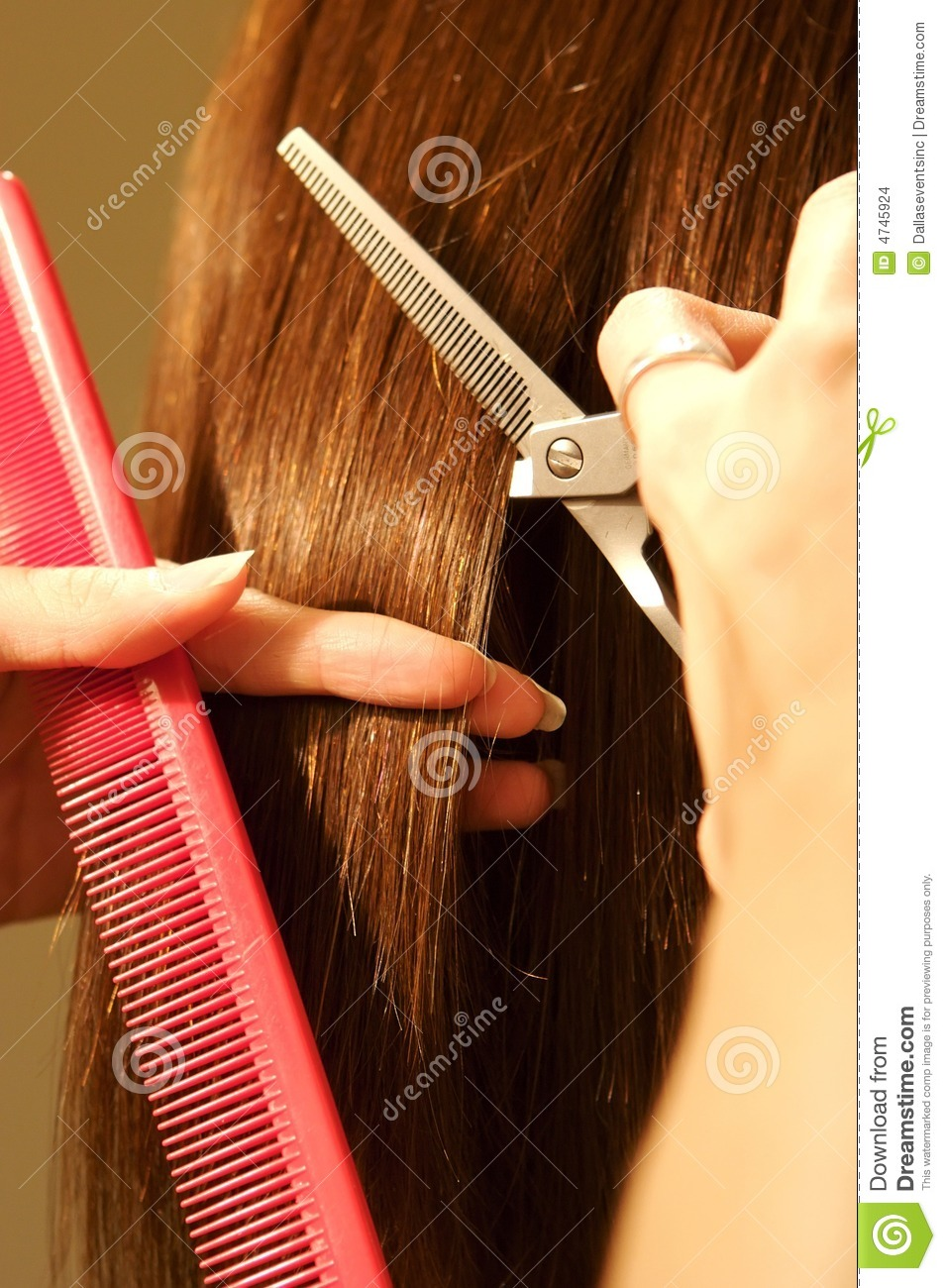 Hair Cutting Pics : More similar stock images of ` Female hair cutting at a salon `