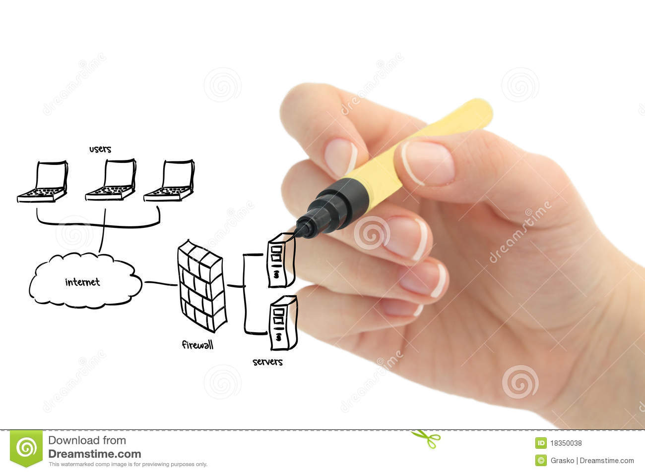 Female Hand Drawing Network Royalty Free Stock Photos