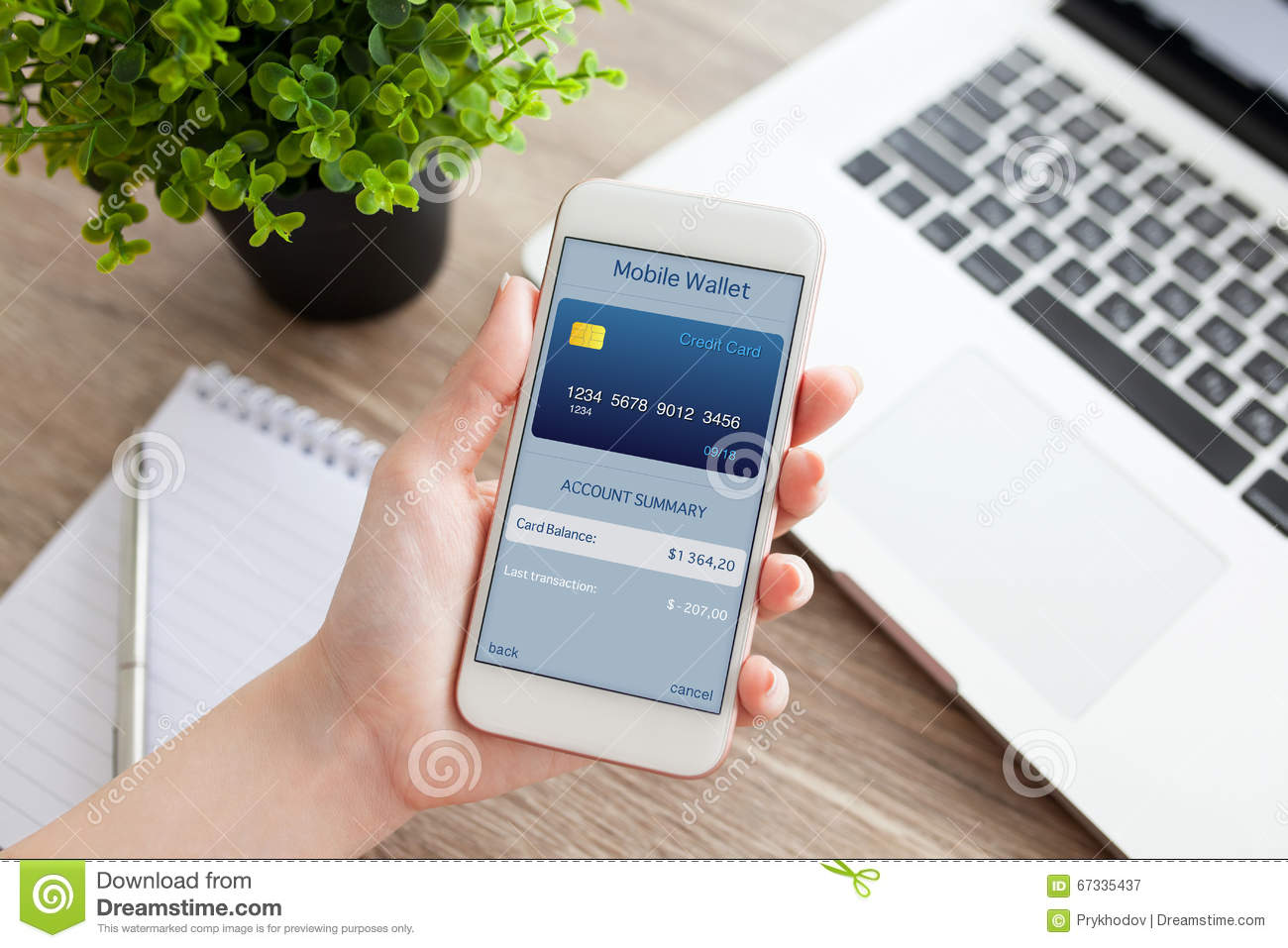 Female hand holding phone with app mobile wallet on screen