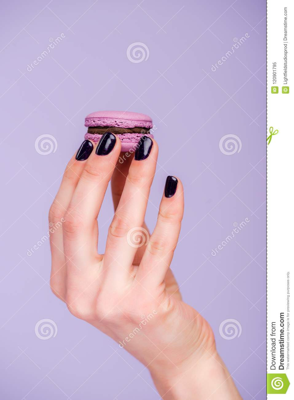 Female hand with macaron