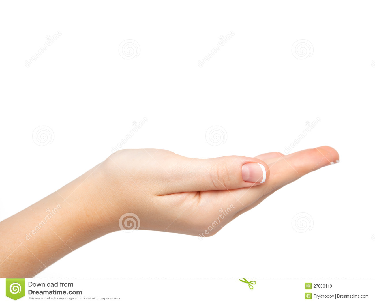 Female Hand Palm Held Subject Stock Photos - Image: 27800113