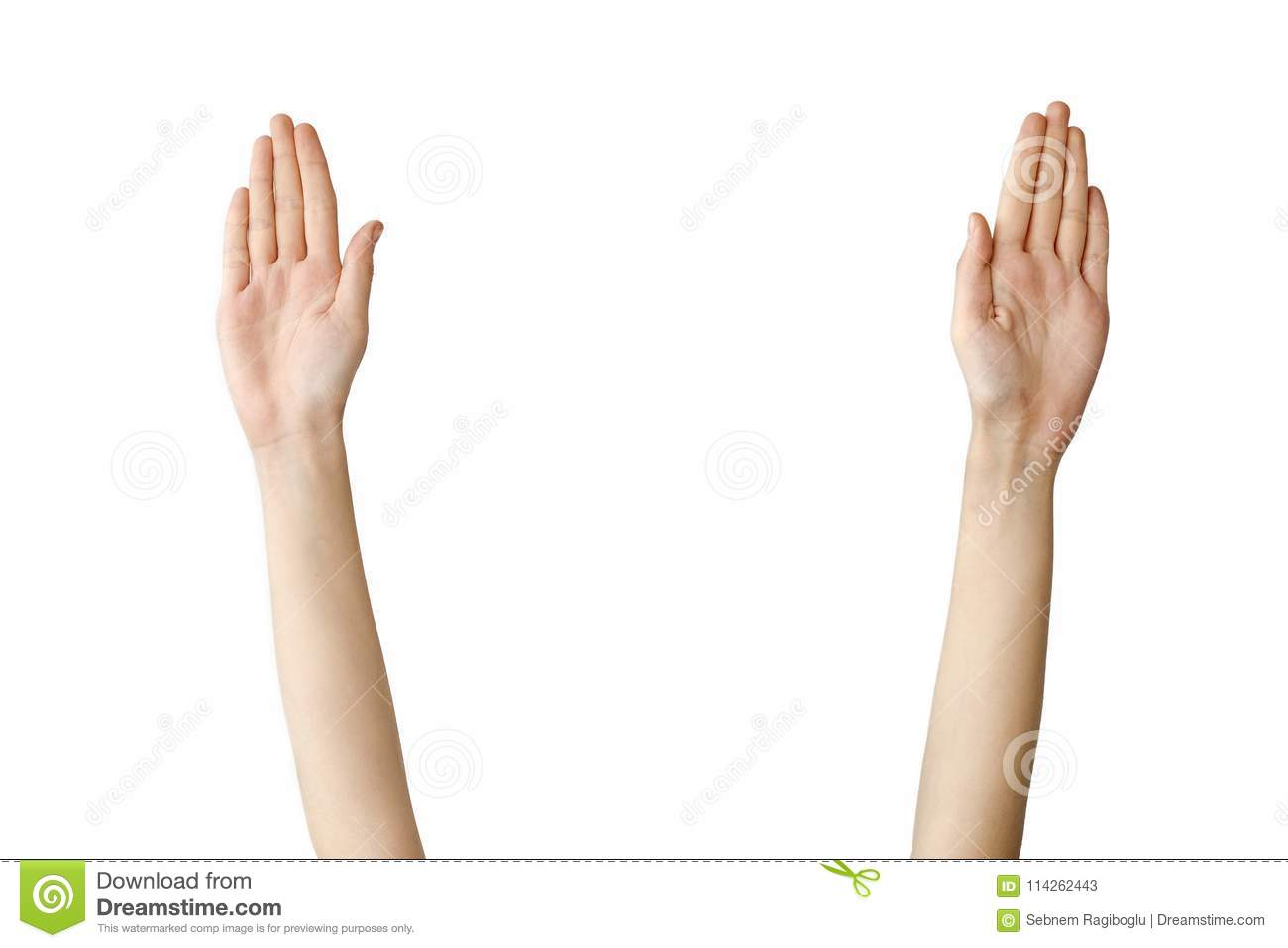 Female hand reaching out on isolated background