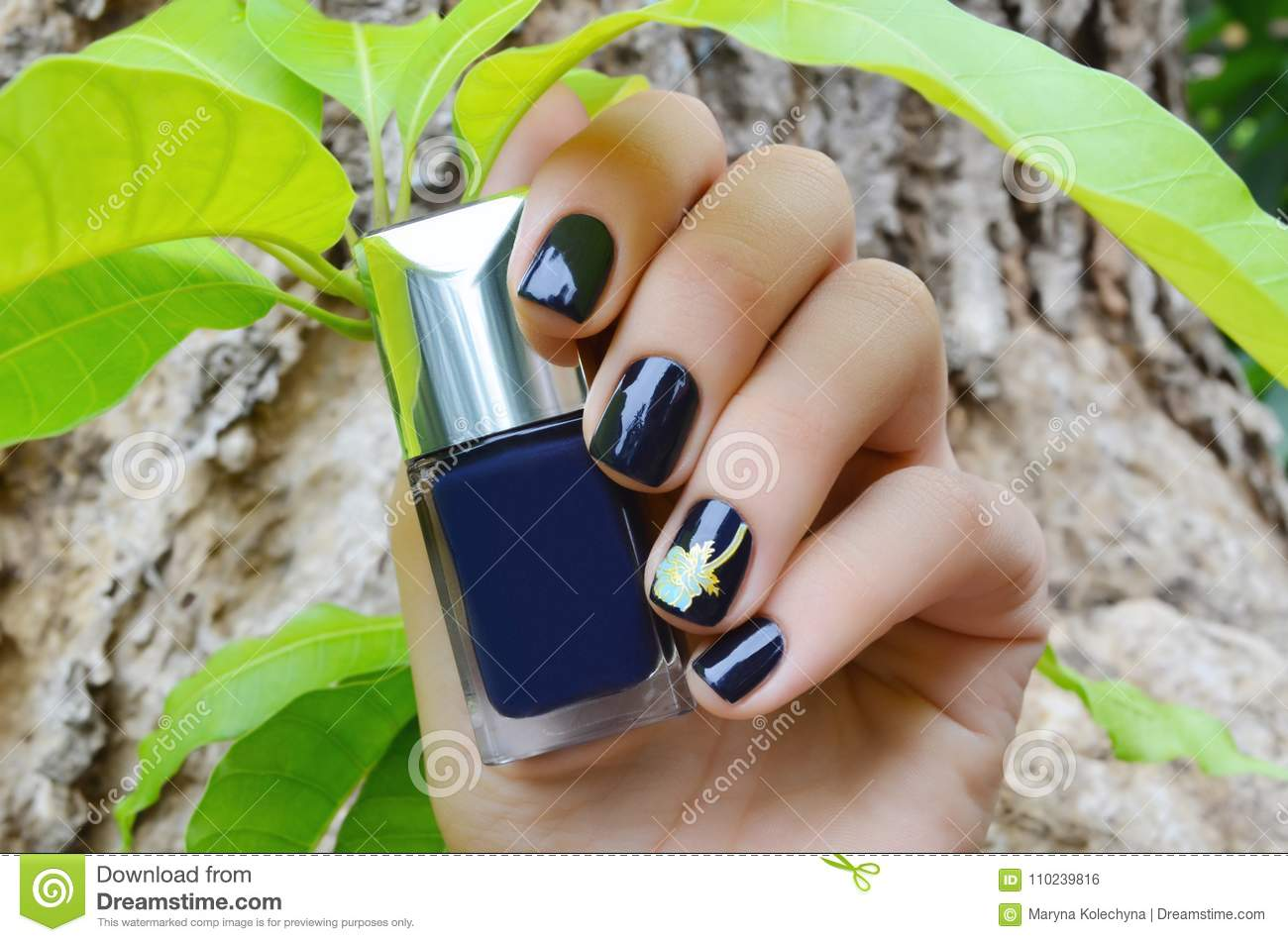 Female Hands With Dark Blue Nail Design Stock Photo Image Of Body