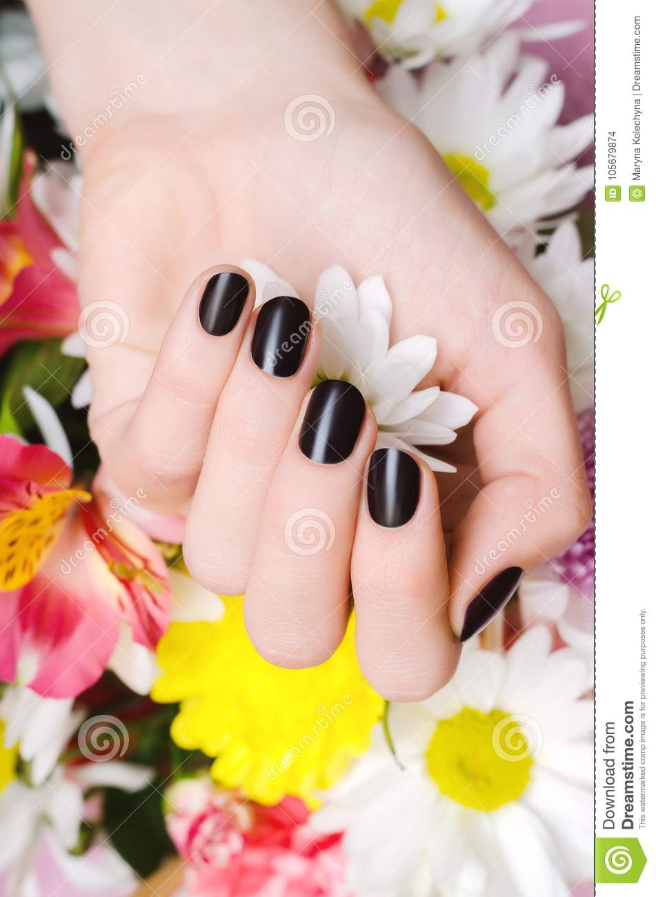 Female Hands With Dark Red Nail Design. Stock Photo - Image of leave ...