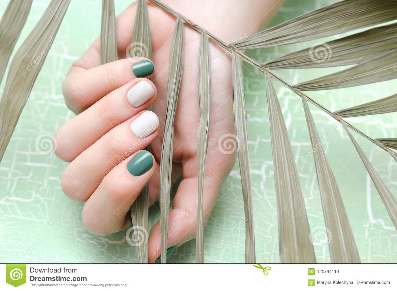 Female Hands With Green Nail Design Stock Photo Image Of Human