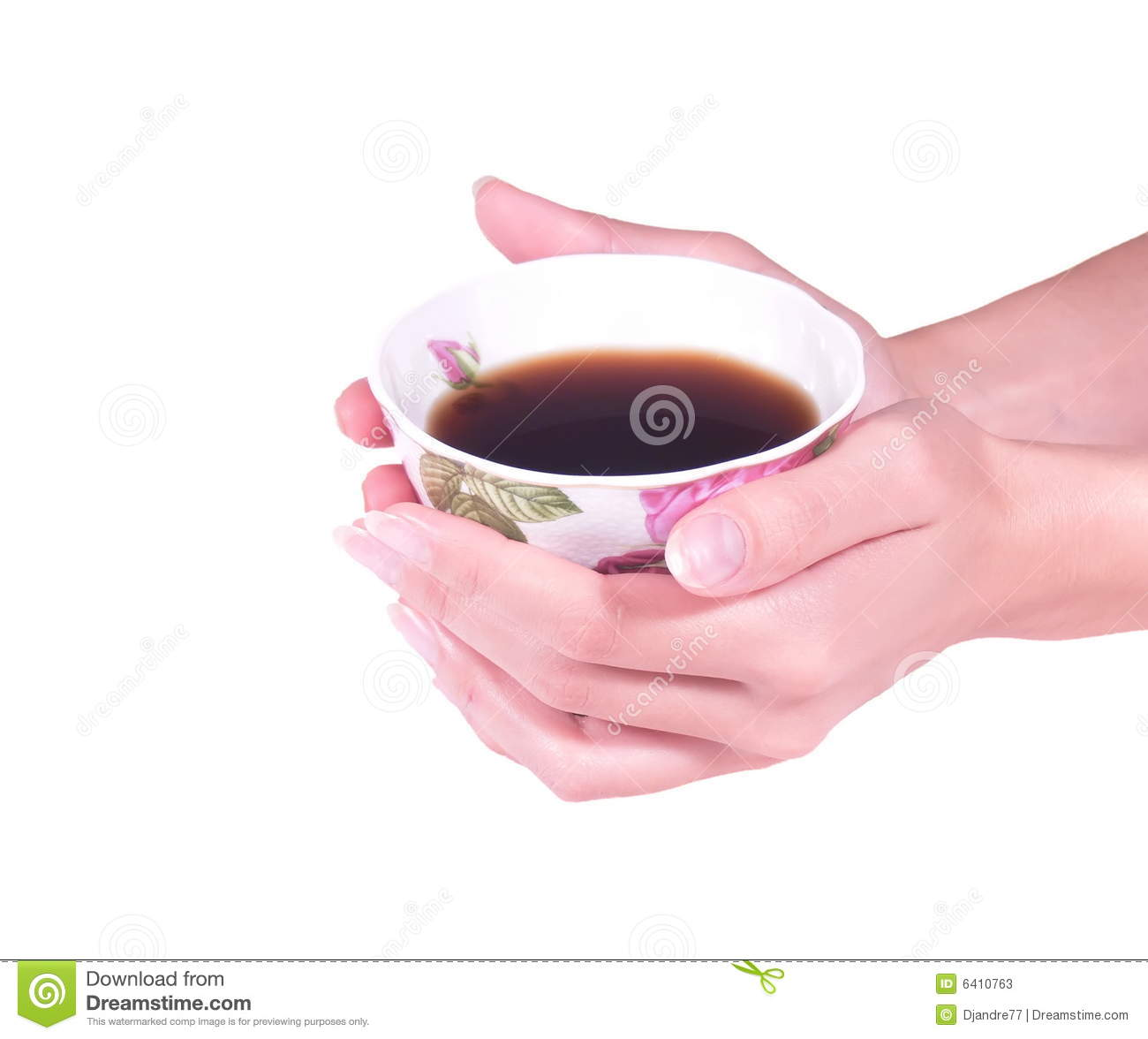 Female Hands Hold A Tea Cup Stock Image Image 6410763