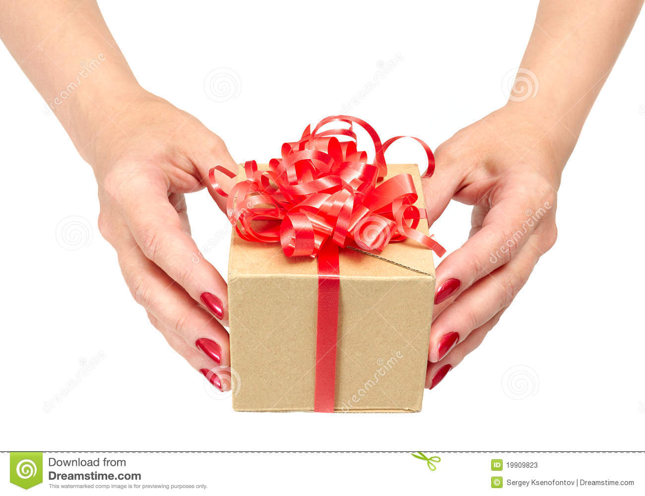 Female Hands Holding Gift Box Stock Photos - Image: 19909823