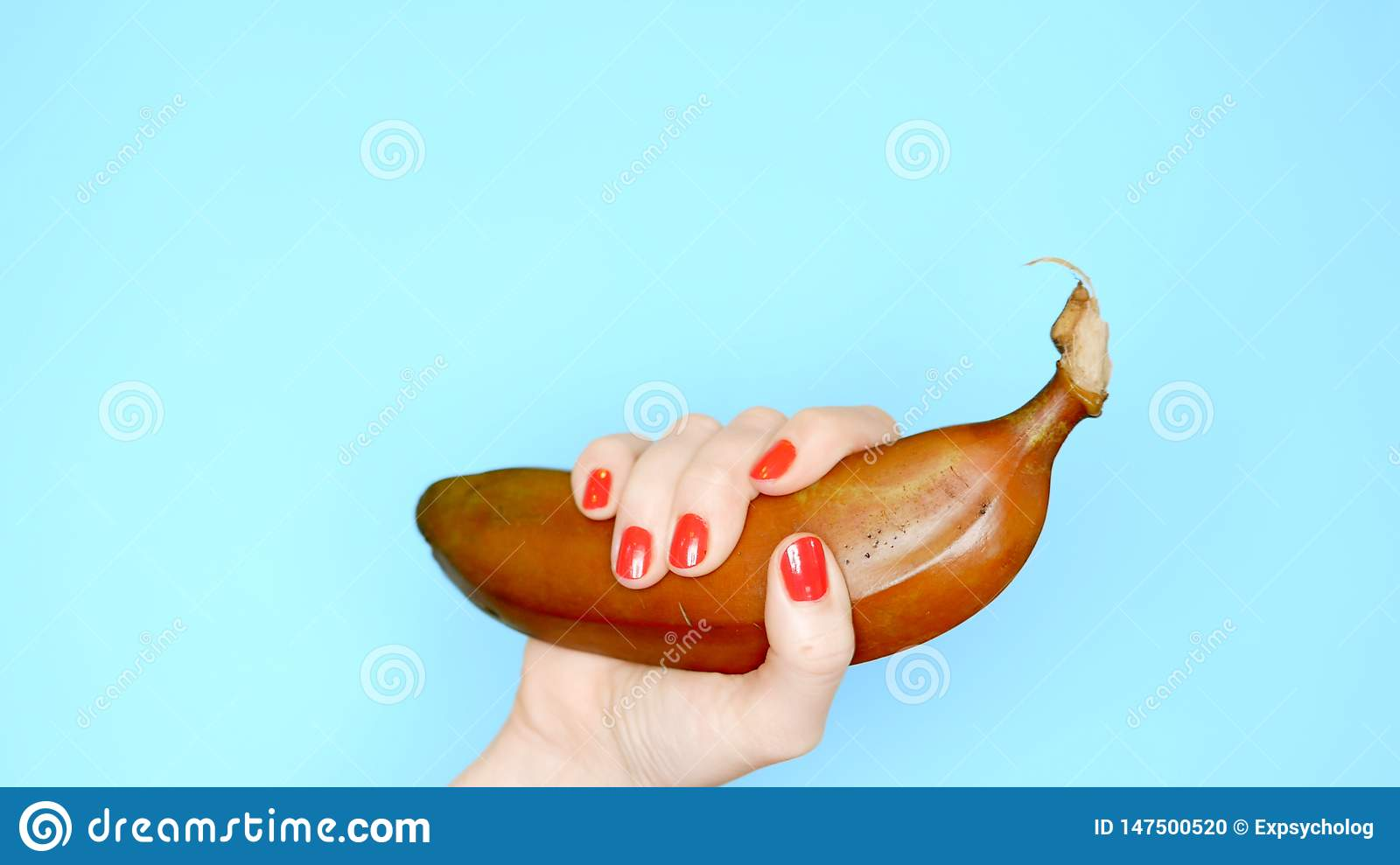 Female hands with red nails hold a red banana on a blue background