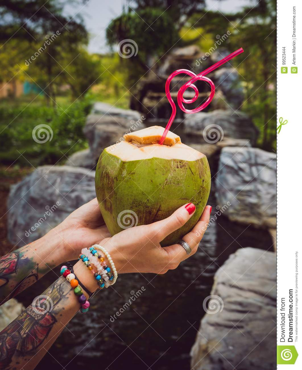 Female hands in tattoos hold a coconut with a tubule in Thailand`s tropical garden. modern style of rest