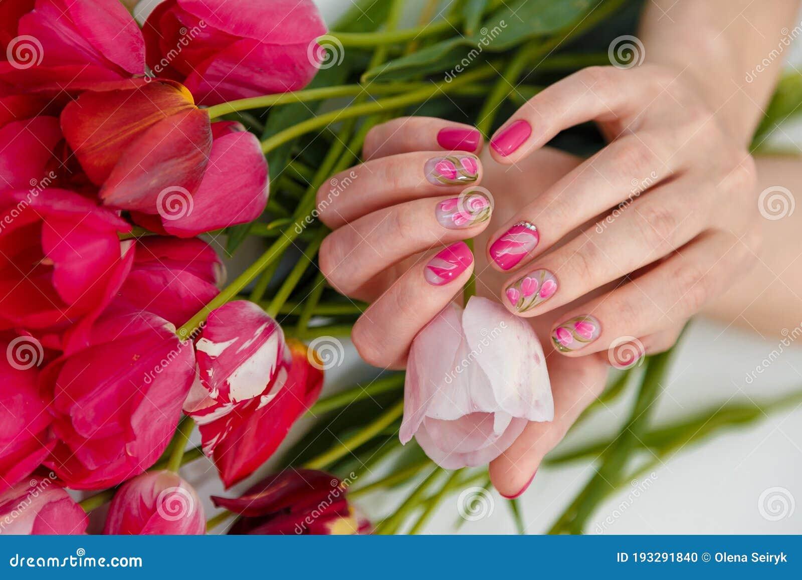 female hands tender spring manicure holding pink fresh tulip flowers background nail art gel nails polish design beauty 193291840