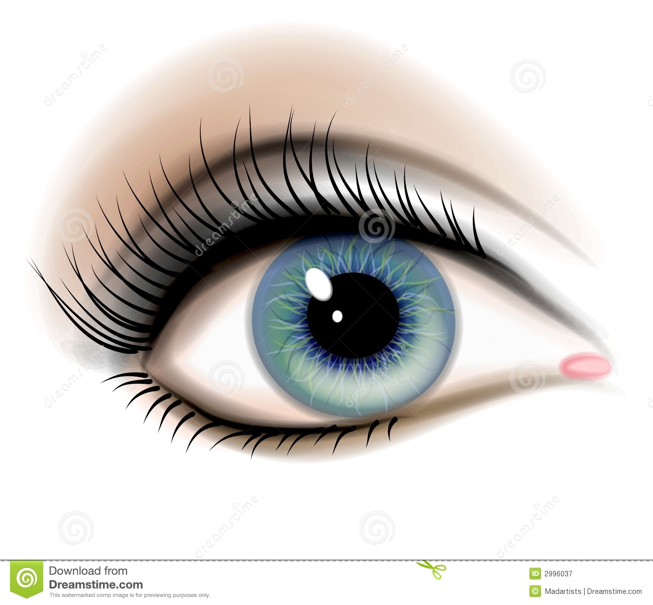 Female Human Eye Illustration Royalty Free Stock