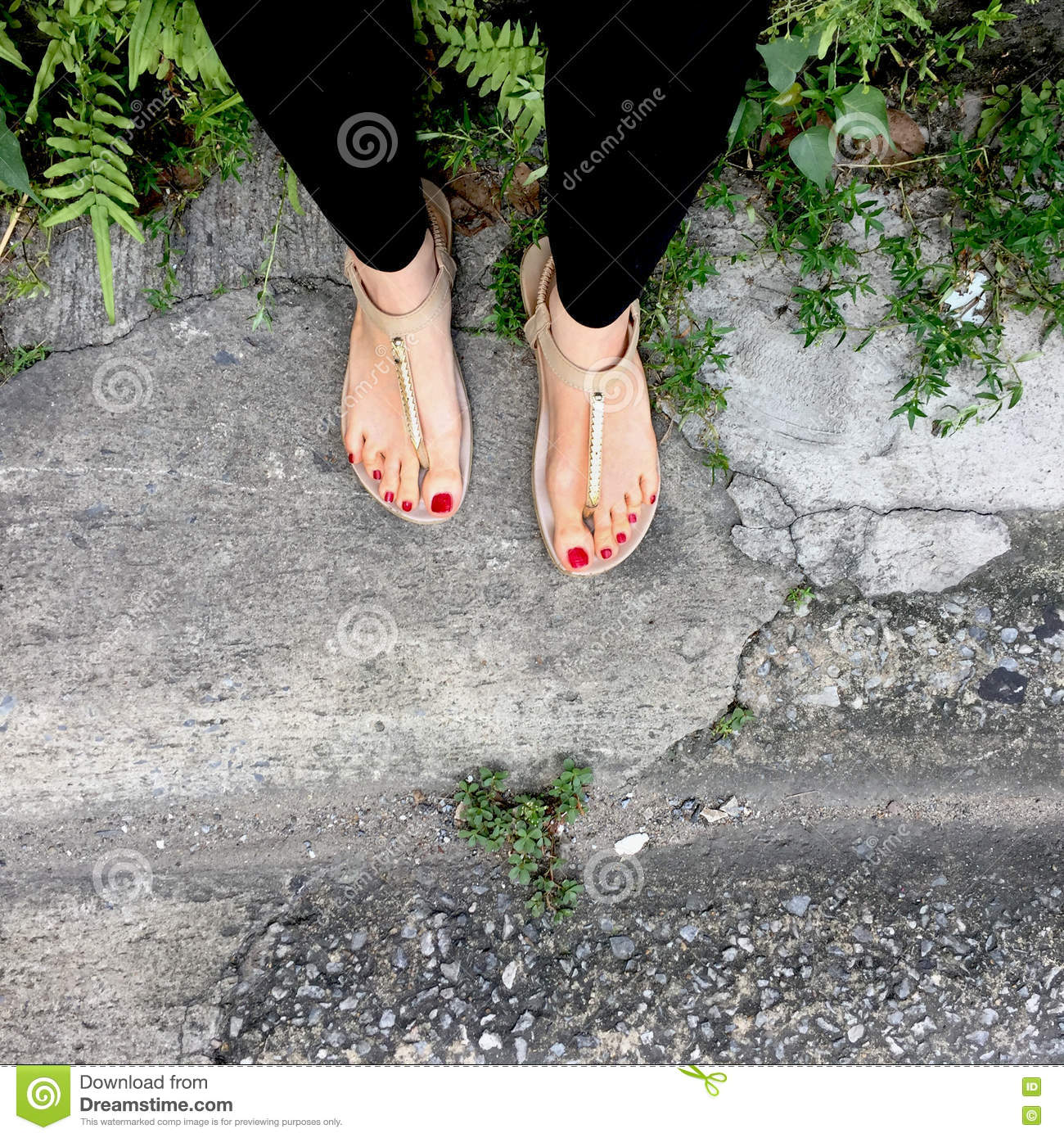 Love These Floors From Flip Or Flop: Female Legs Wearing Footwear Shoes Or Flip-flop Outdoor
