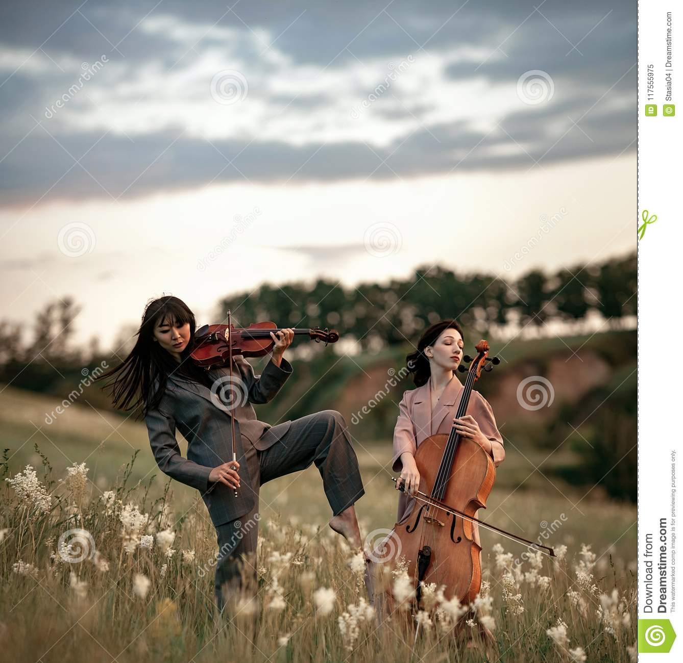 Female Musical Duet With Violin And Cello Plays On Meadow