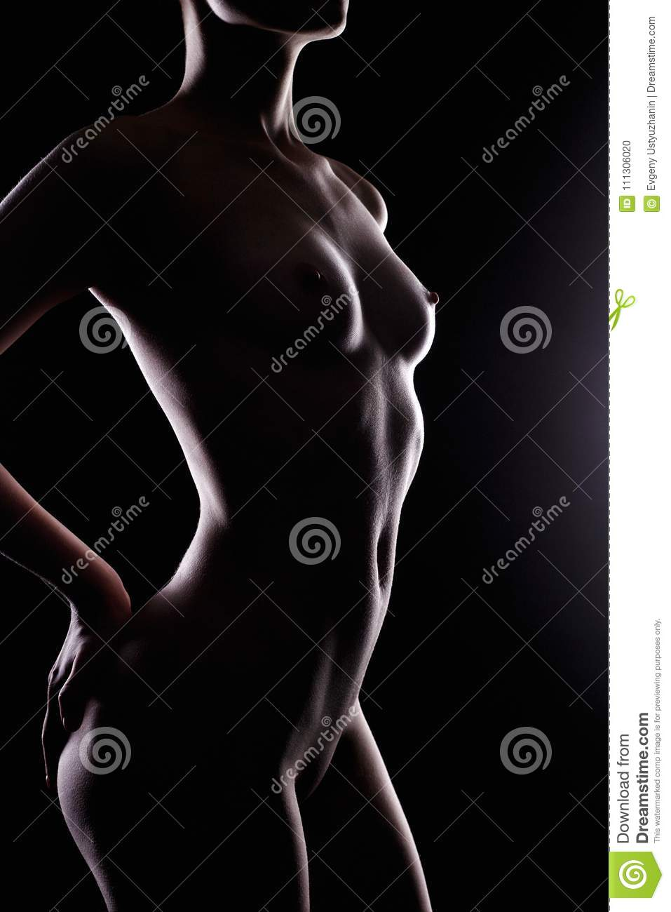 Black nude woman silhouette Female Nude Silhouette Over Black Stock Photo Image Of Naked Fashion 111306020
