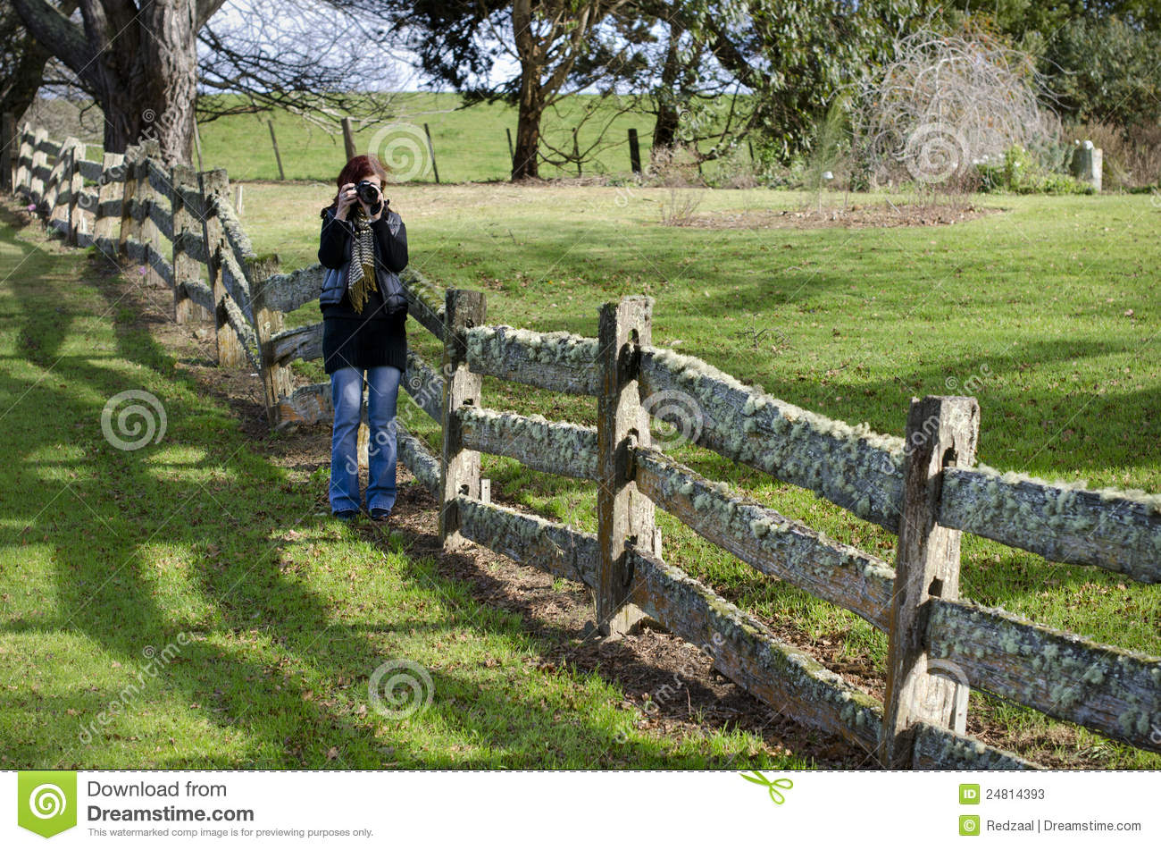 Female Photographer At Old Post And Rail Fence Stock Image
