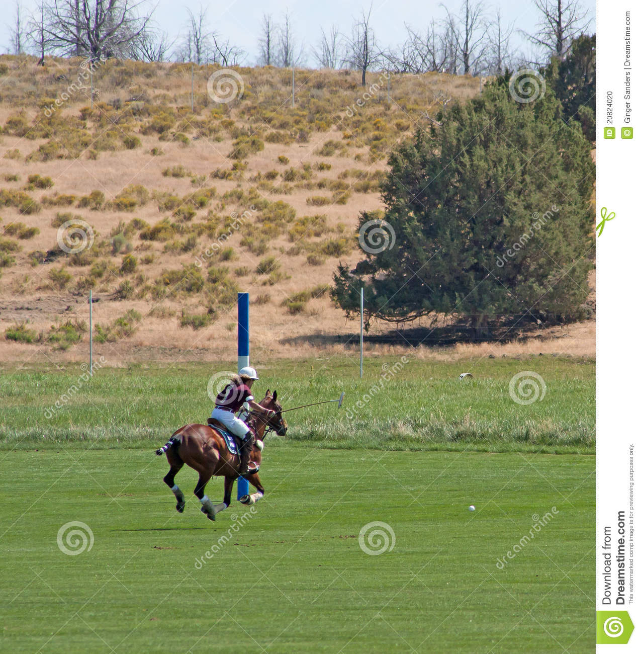 Female Polo Player Heading For Goal