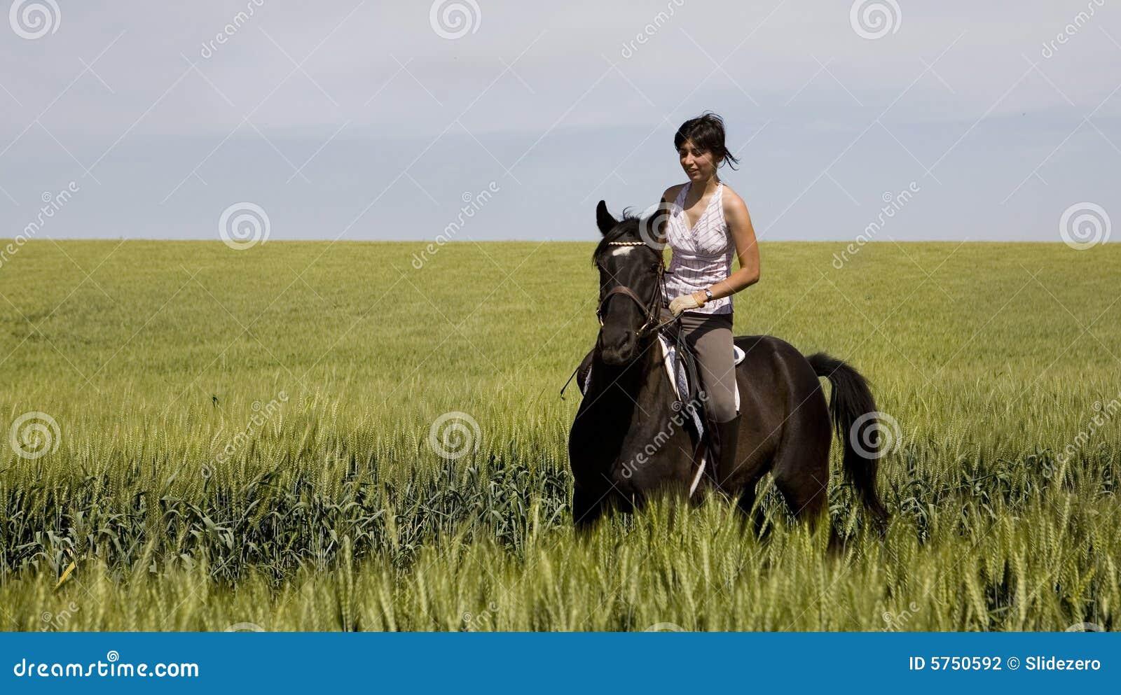 A Female Riding On A Black Horse Stock Photo Image Of Mane Exercising 5750592