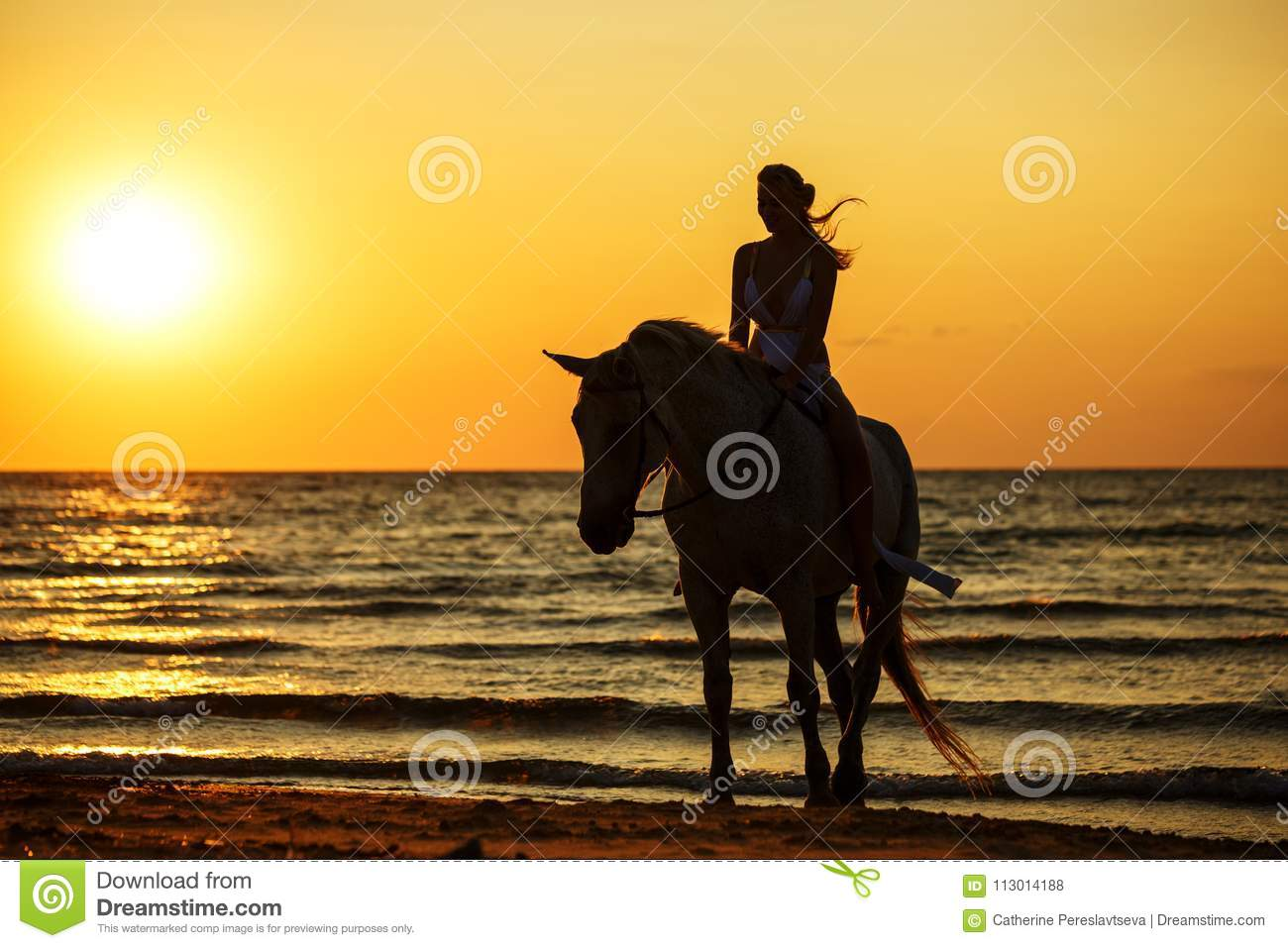 Female silhouette on a horse at sunset by the sea