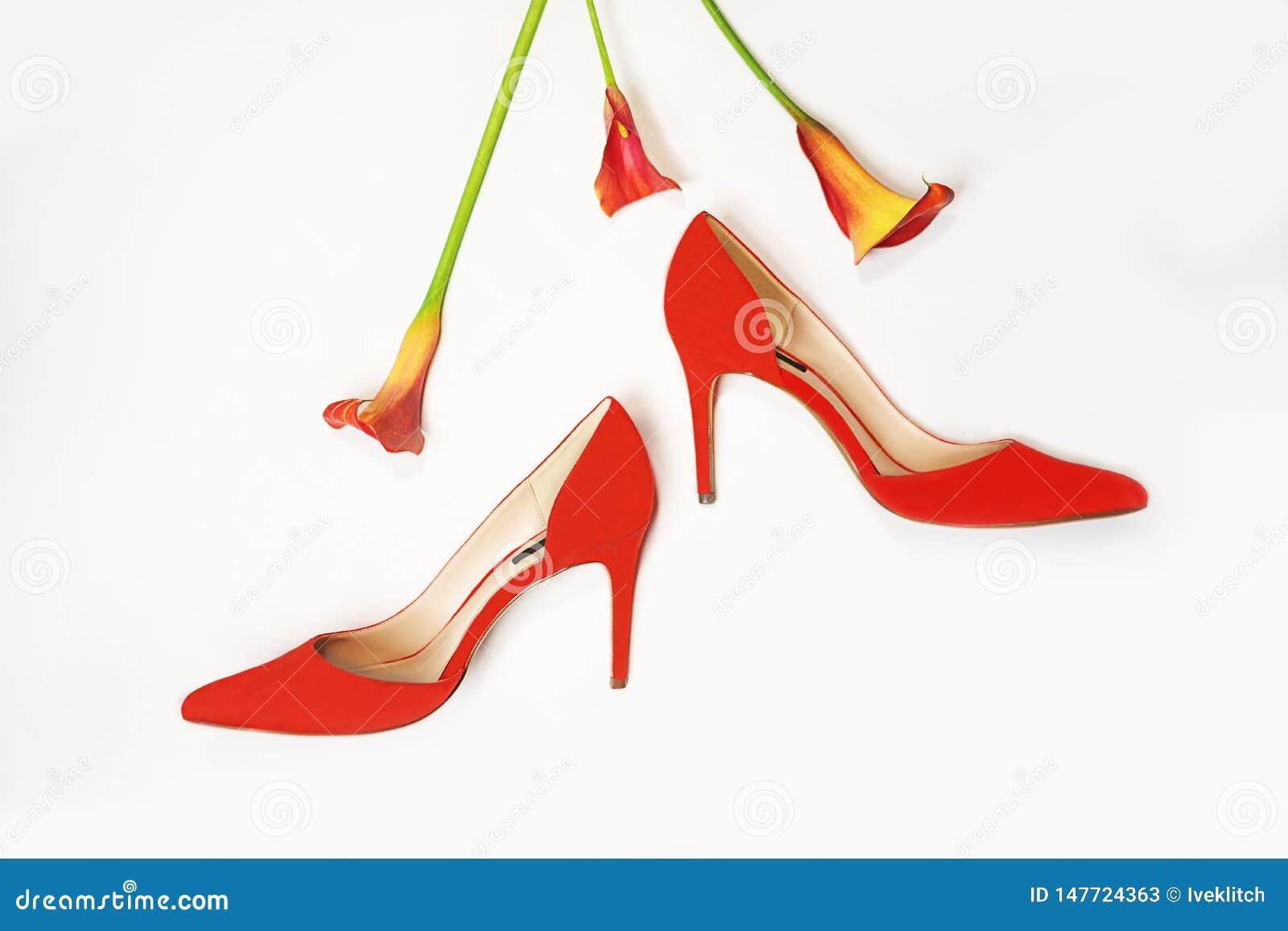 Female Stylish Accessories Fashion