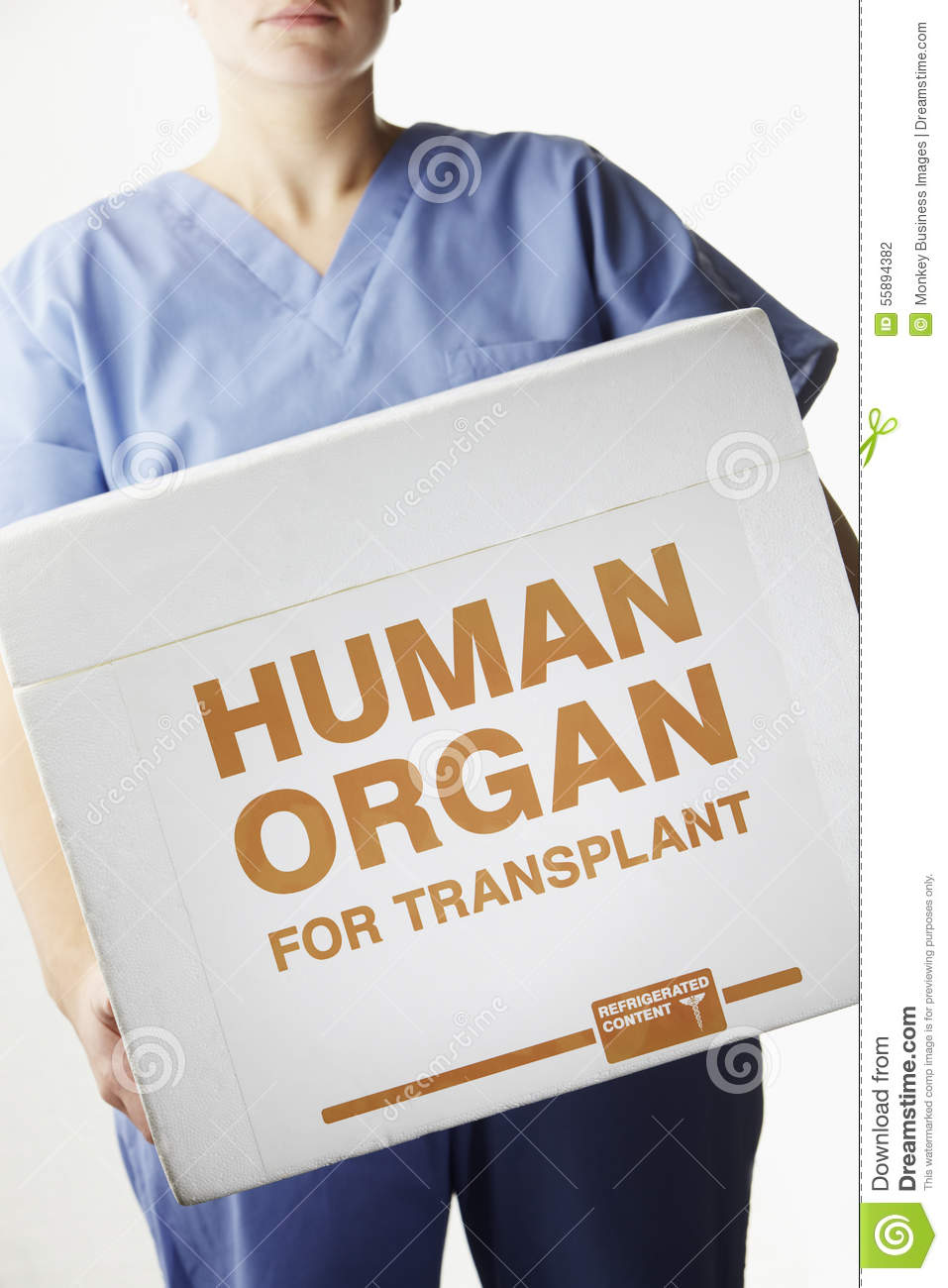 Argumentative essay on organ donation research (creative writing prompts gifted students)