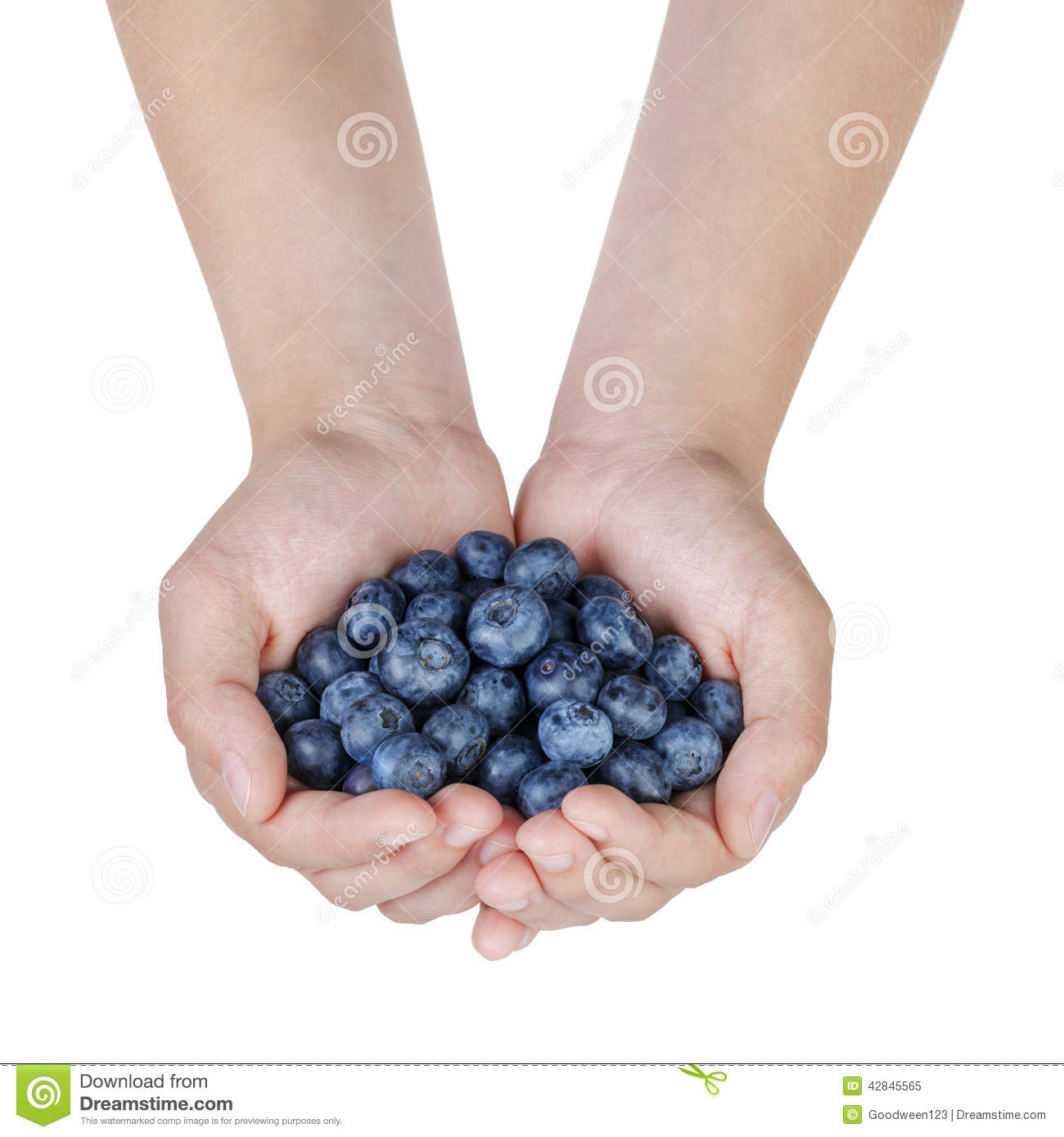 how to know when blueberries are ripe