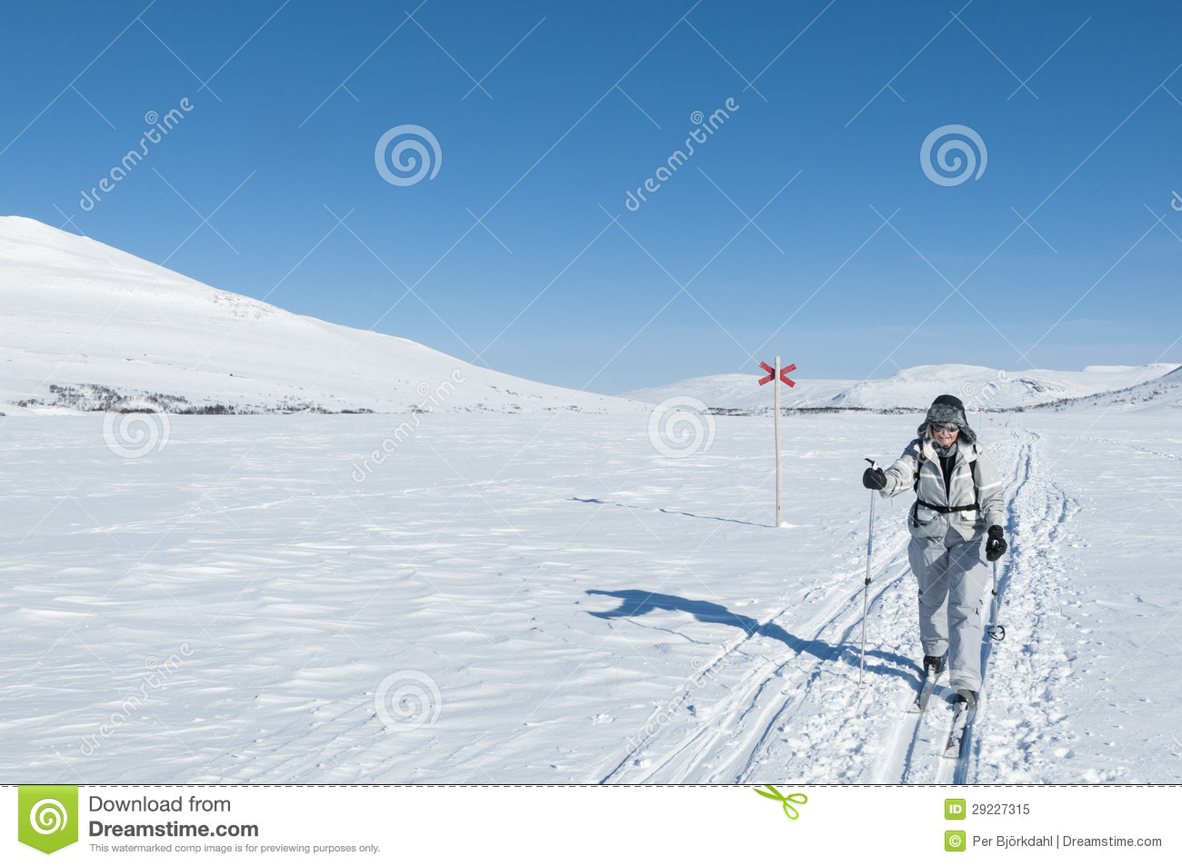 Download Female Tour Skier In Backcountry Ski Track Stock Image - Image of tracks, country: 29227315