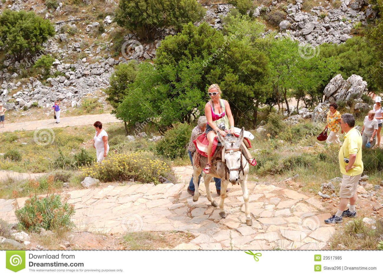 The female tourist on a donkey