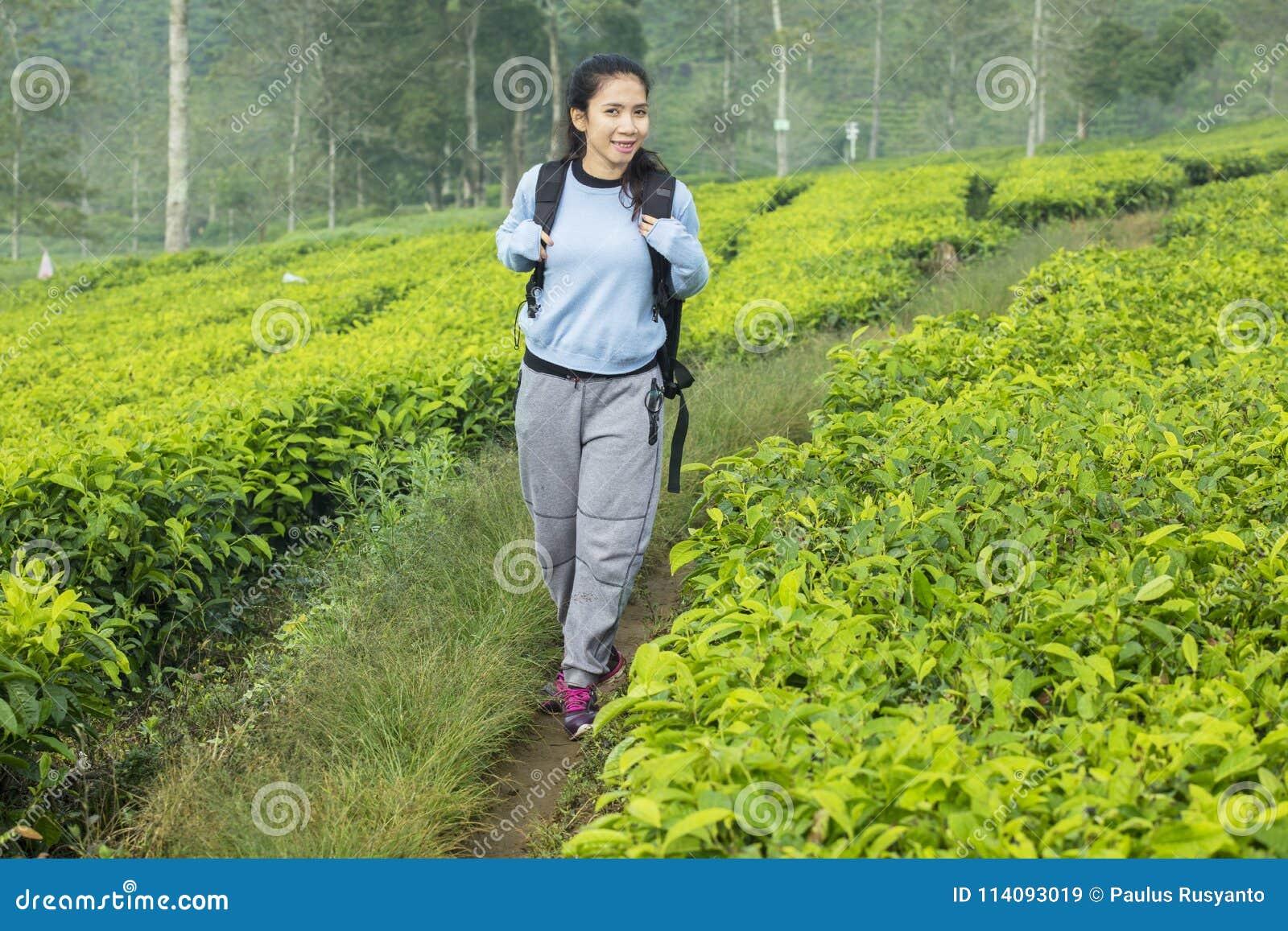 Female tourist walking in the tea plantation
