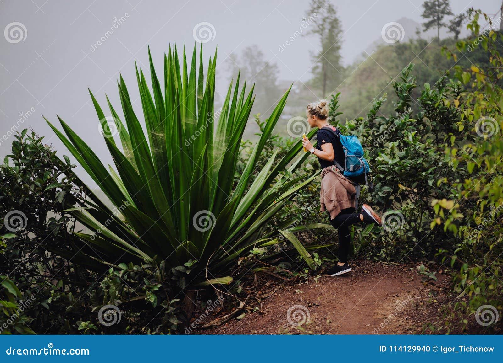 Female traveler amire huge endemic agave plant on Santo Antao Cape Verde