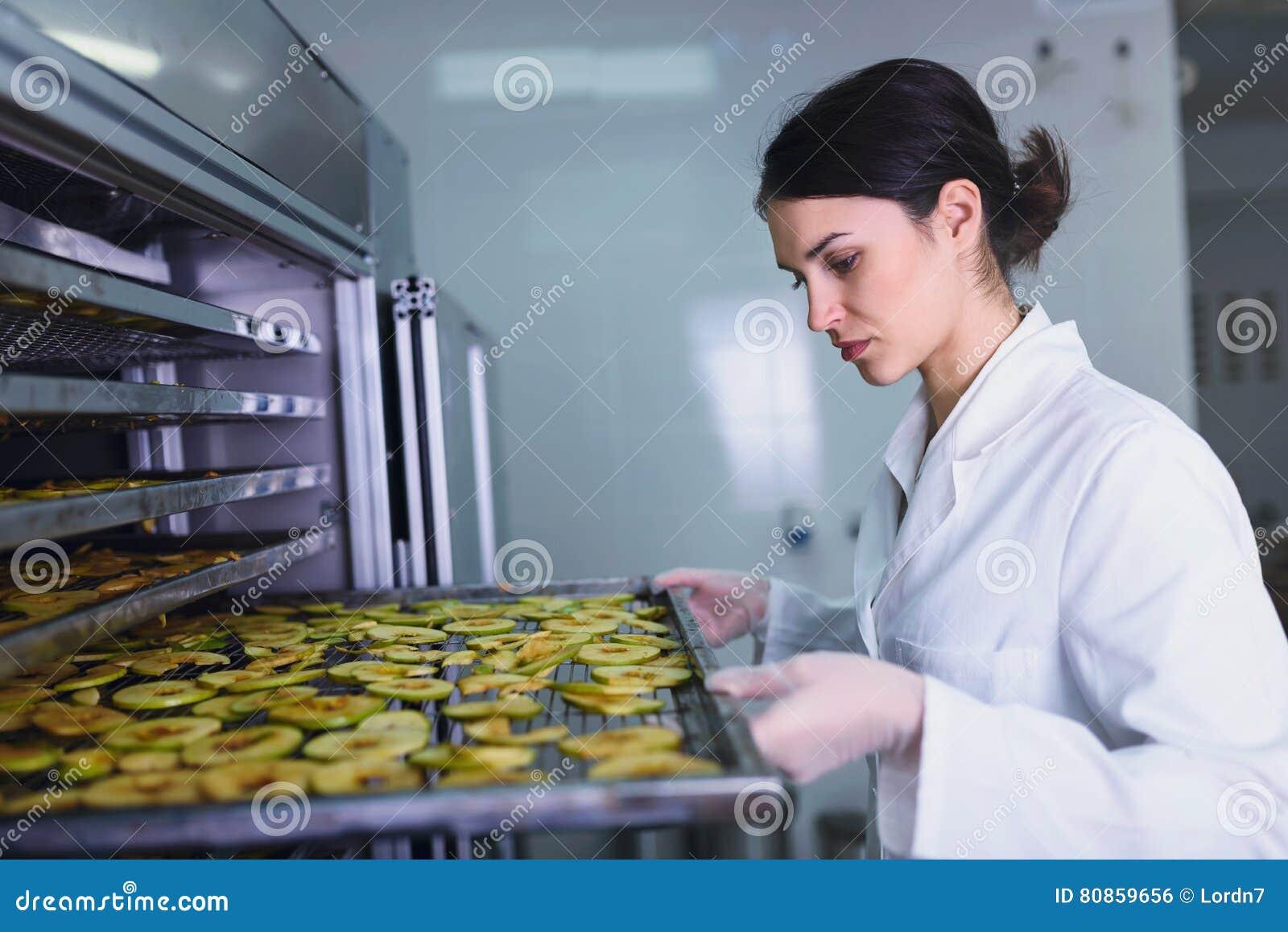 Female worker on food dryer dehydrator machine