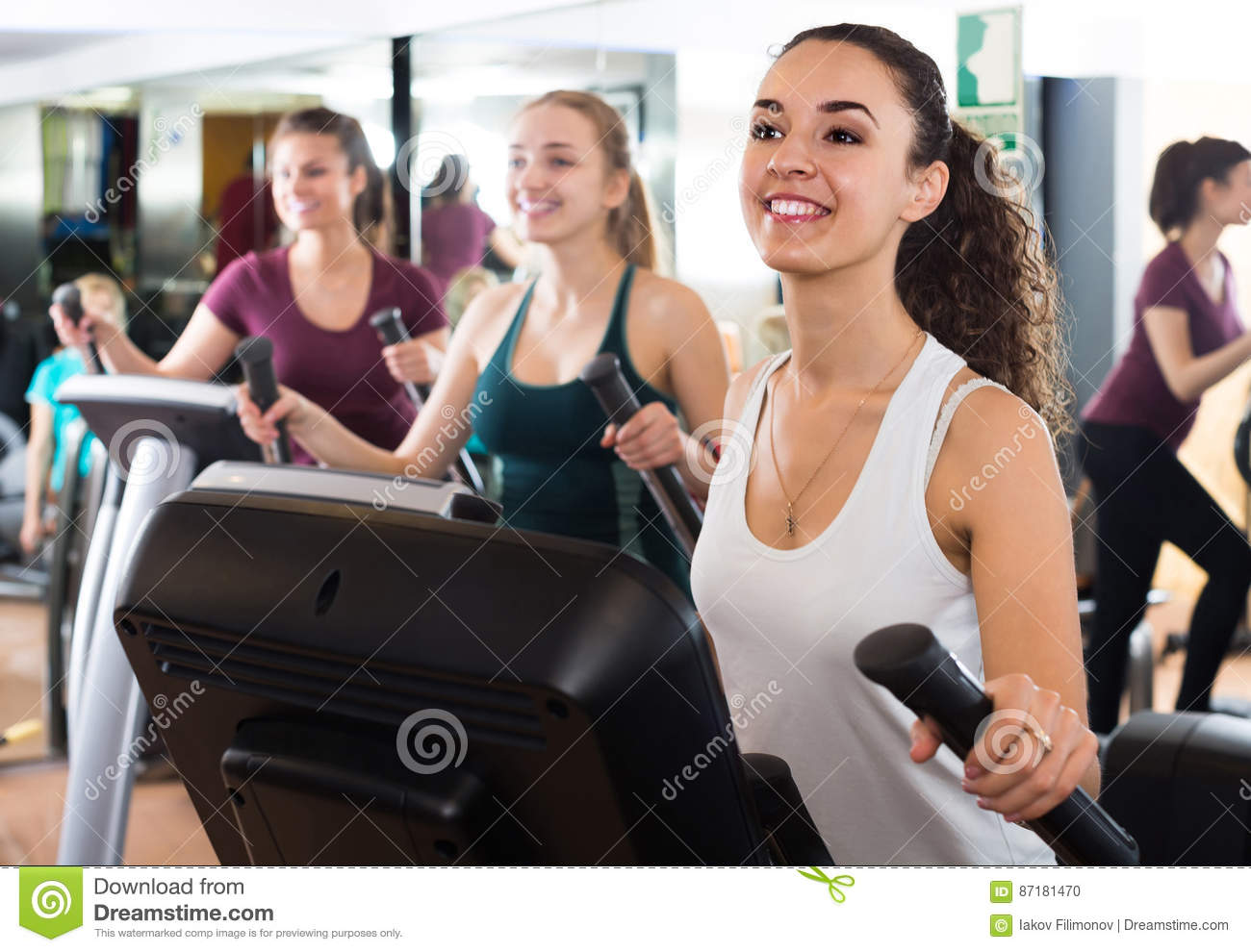 Females training on elliptical trainers in fitness club
