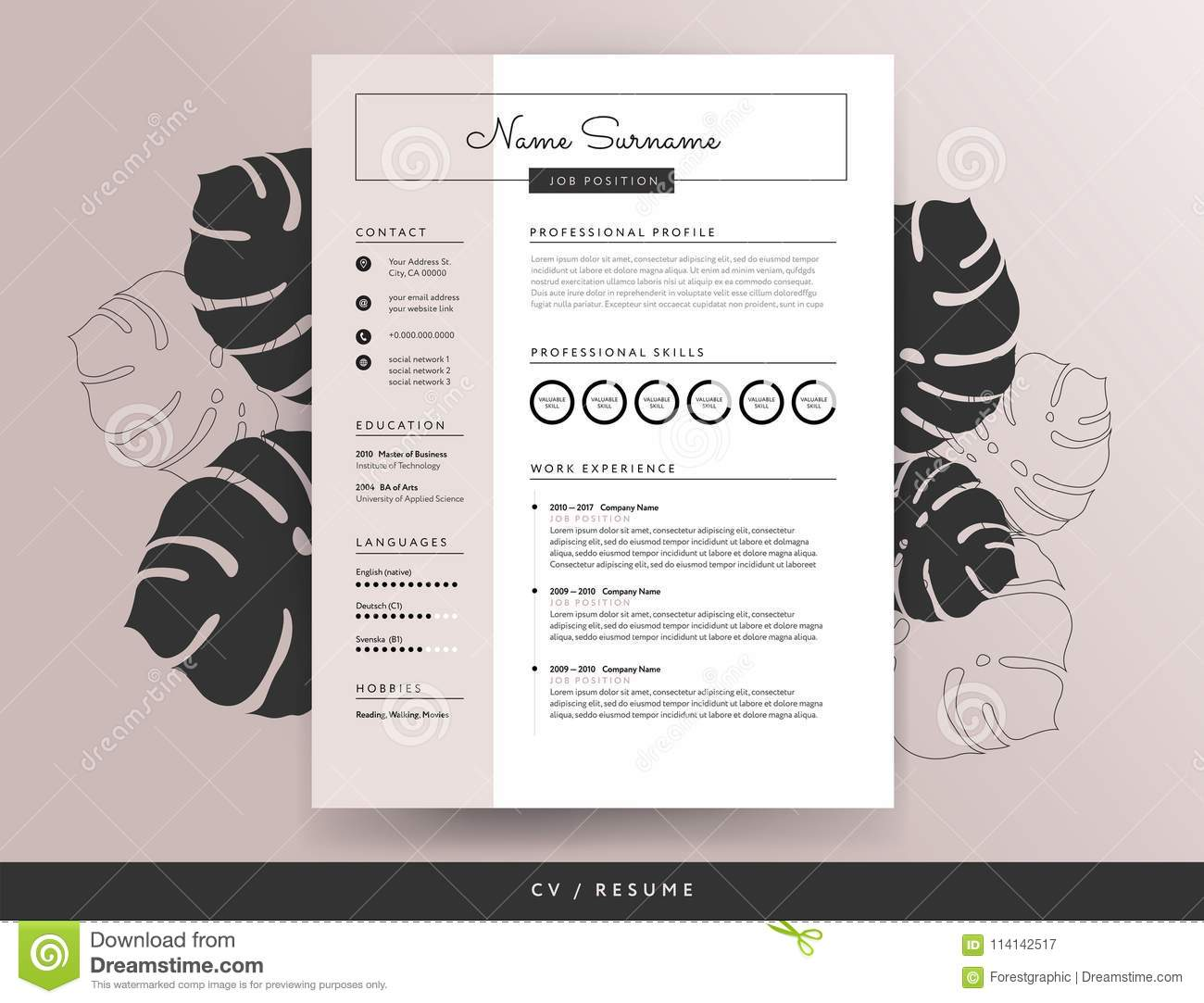 feminine cv resume template - vector illustration stock vector