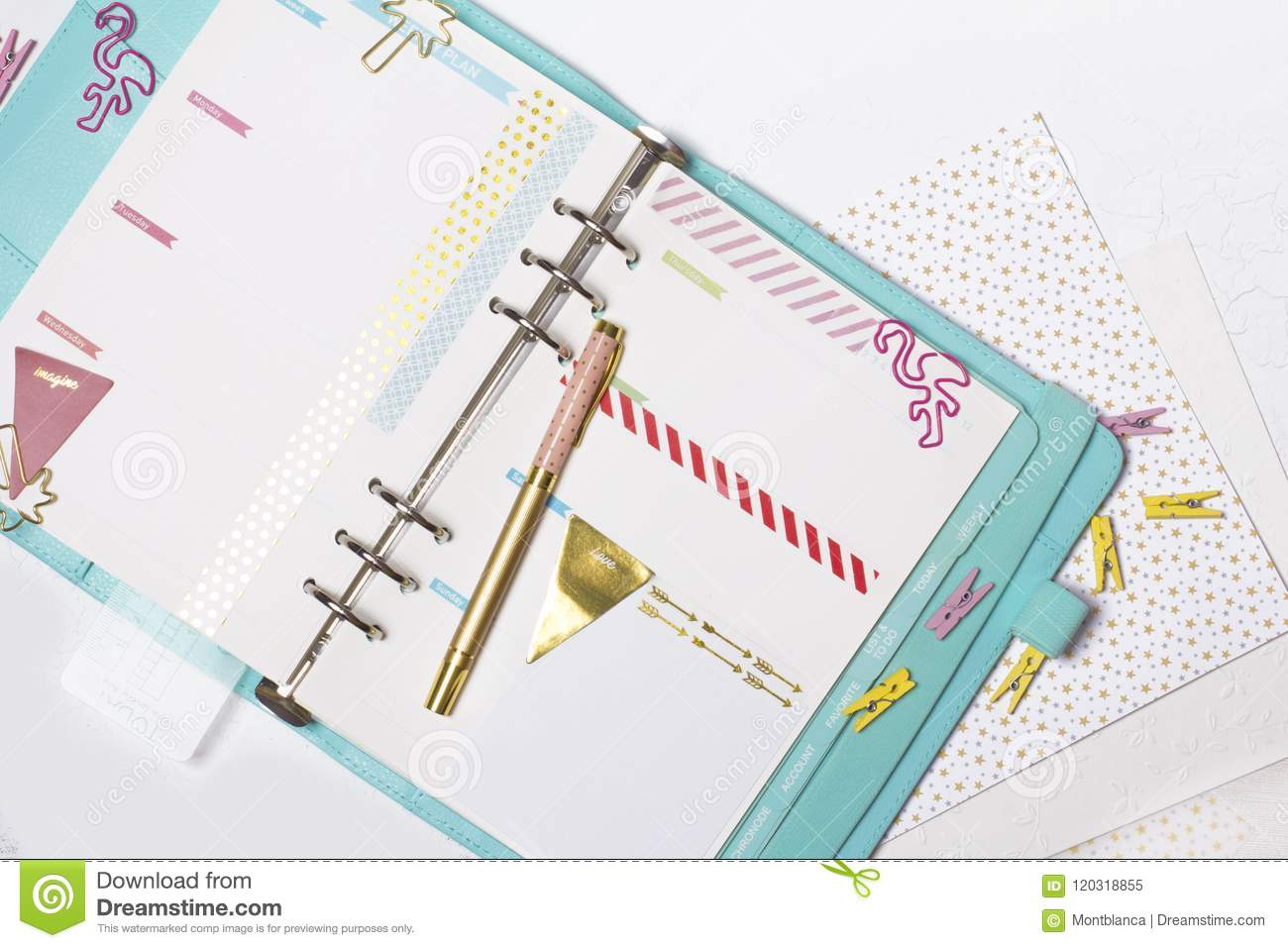 Feminine stationery: colorful paper binder clips palm and flamin